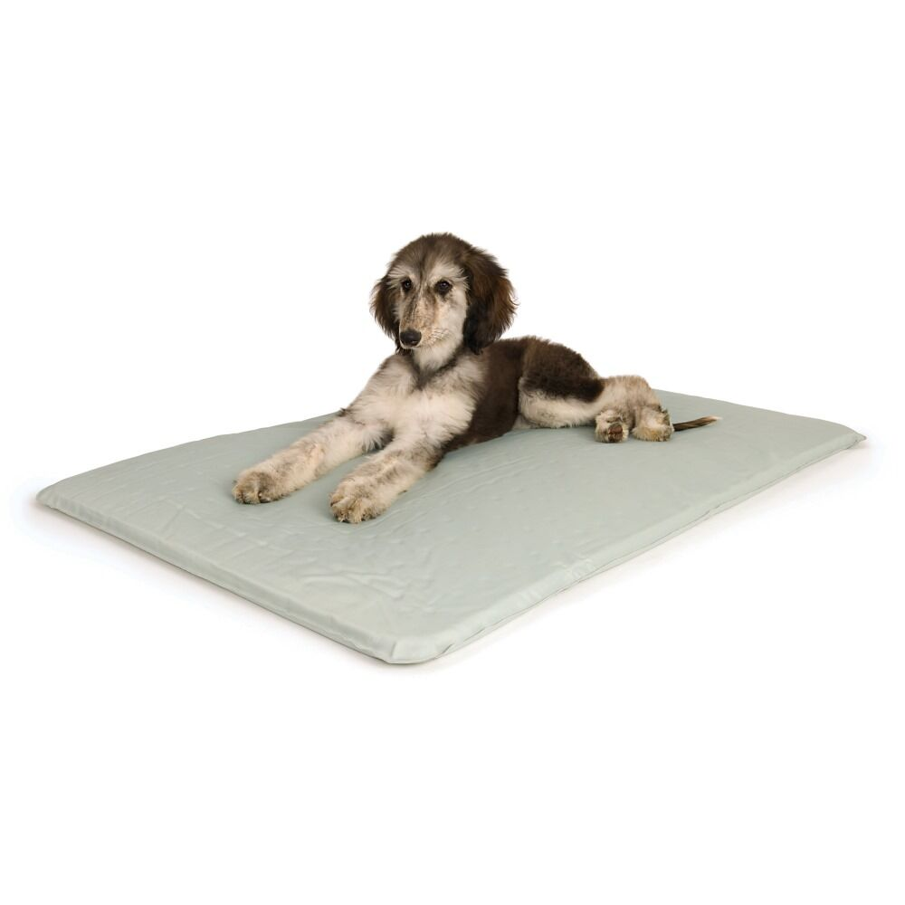 Cool Bed III Thermoregulating Pad Size: Small (24