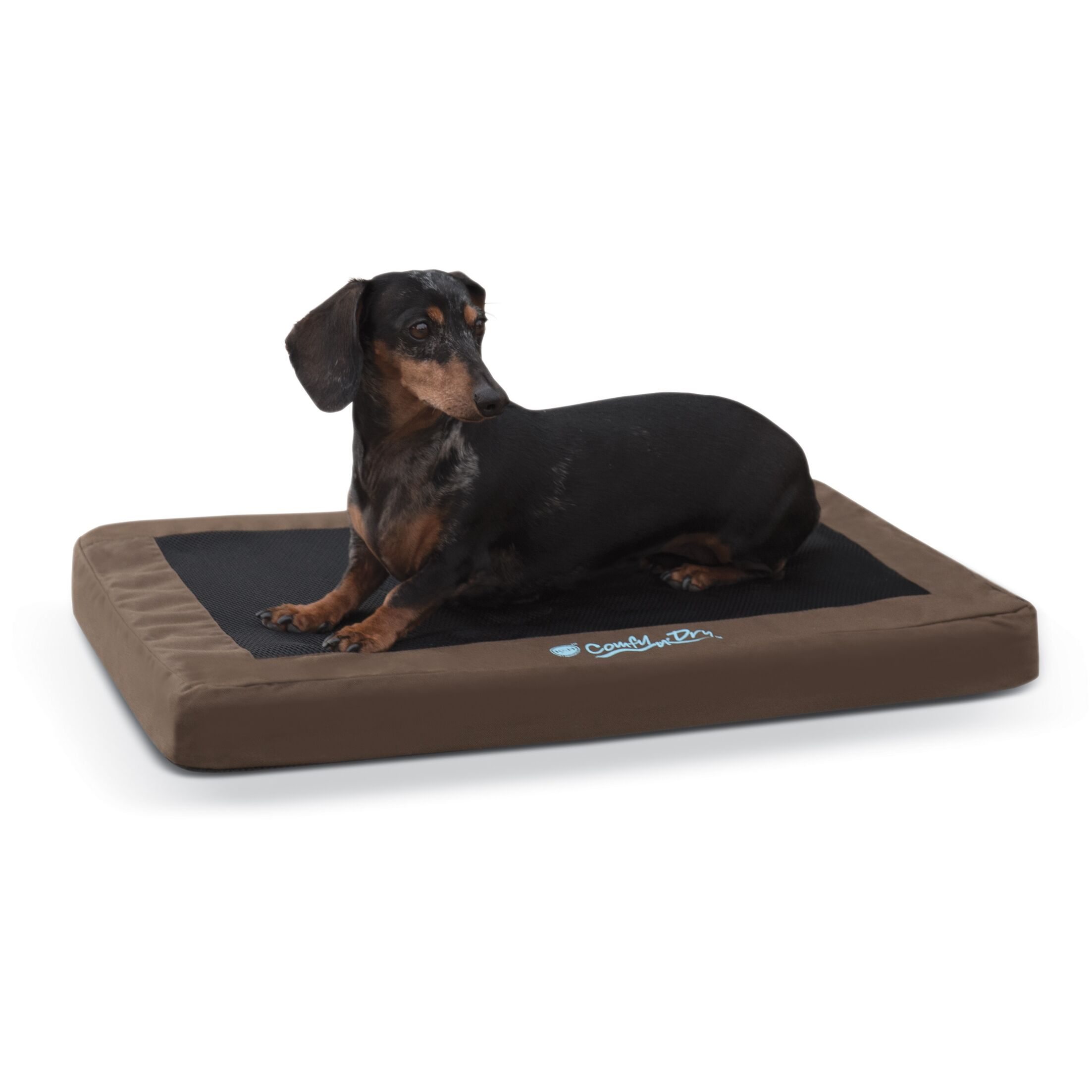 Comfy N' Dry Indoor / Outdoor Dog Bed Size: Medium, Color: Chocolate