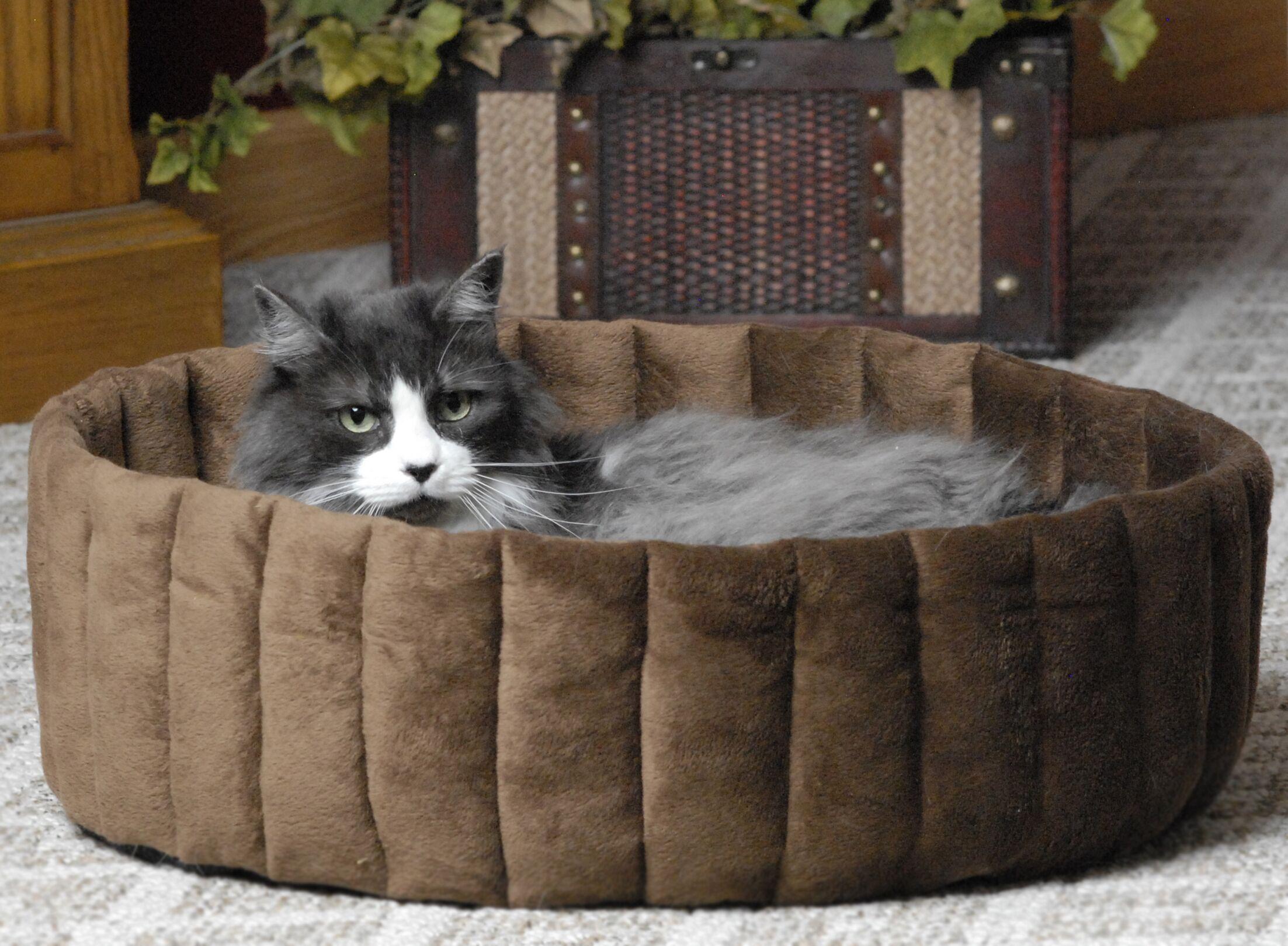 Kitty Kup Size: 16