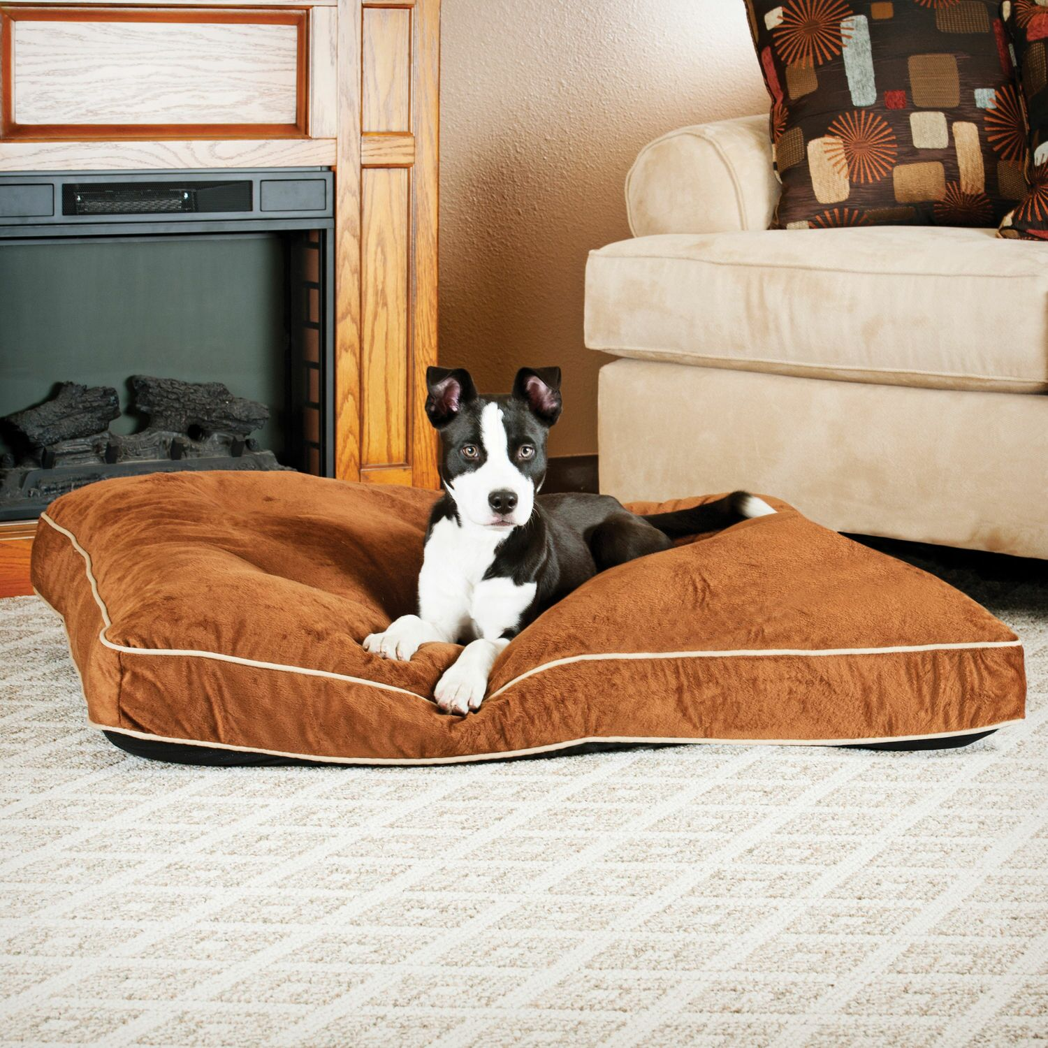 Dog Tufted Pillow Top Bed Color: Chocolate, Size: Large