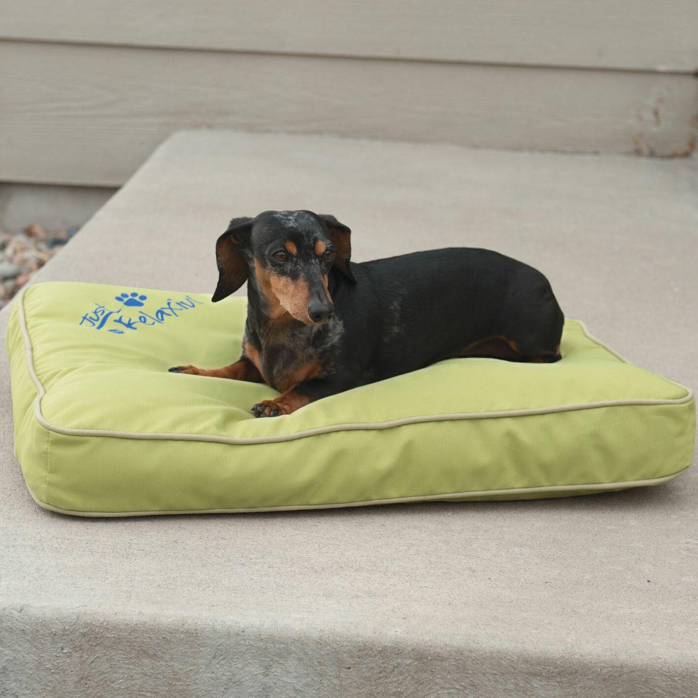 Just Relaxin' Indoor/Outdoor Pet Mat Size: Large (48