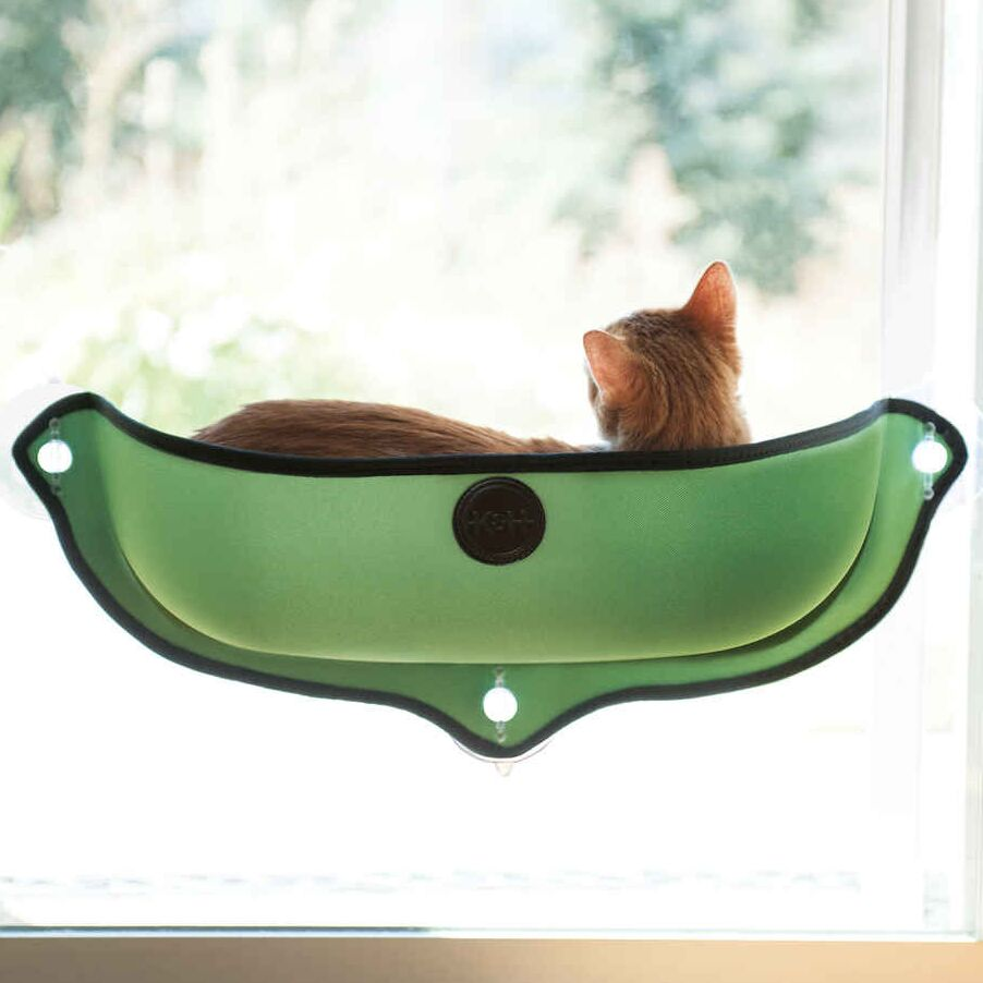 EZ Mount Window Bed Kitty Sill Color: Green