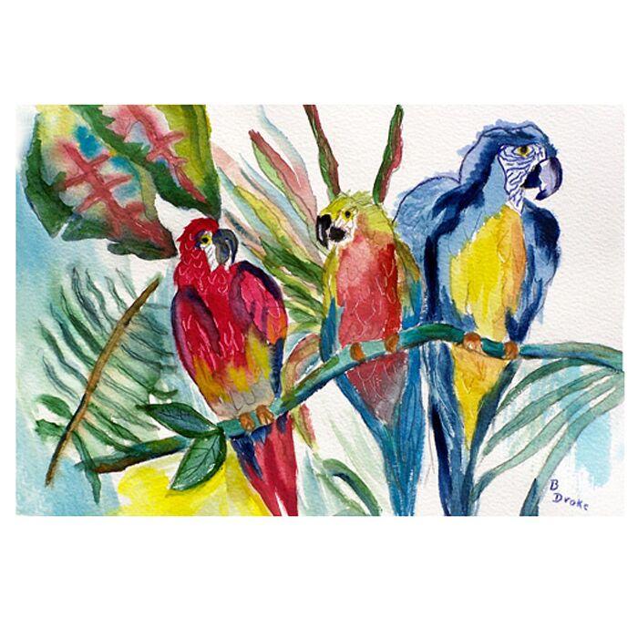 Coastal Parrot Family Doormat Mat Size: Rectangle 30