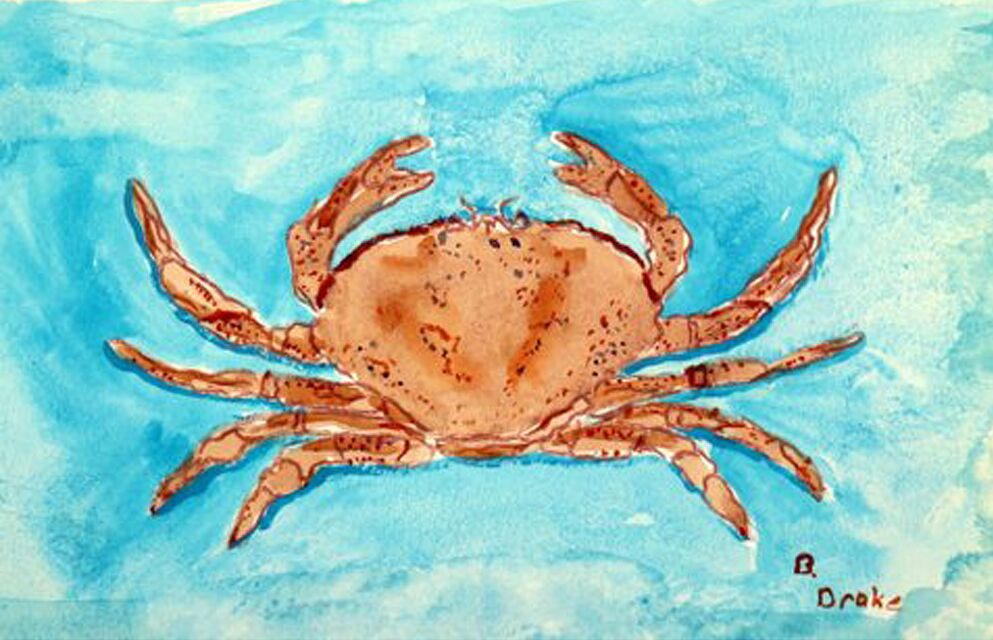 Liesl Crab Doormat Mat Size: Rectangle 2'6