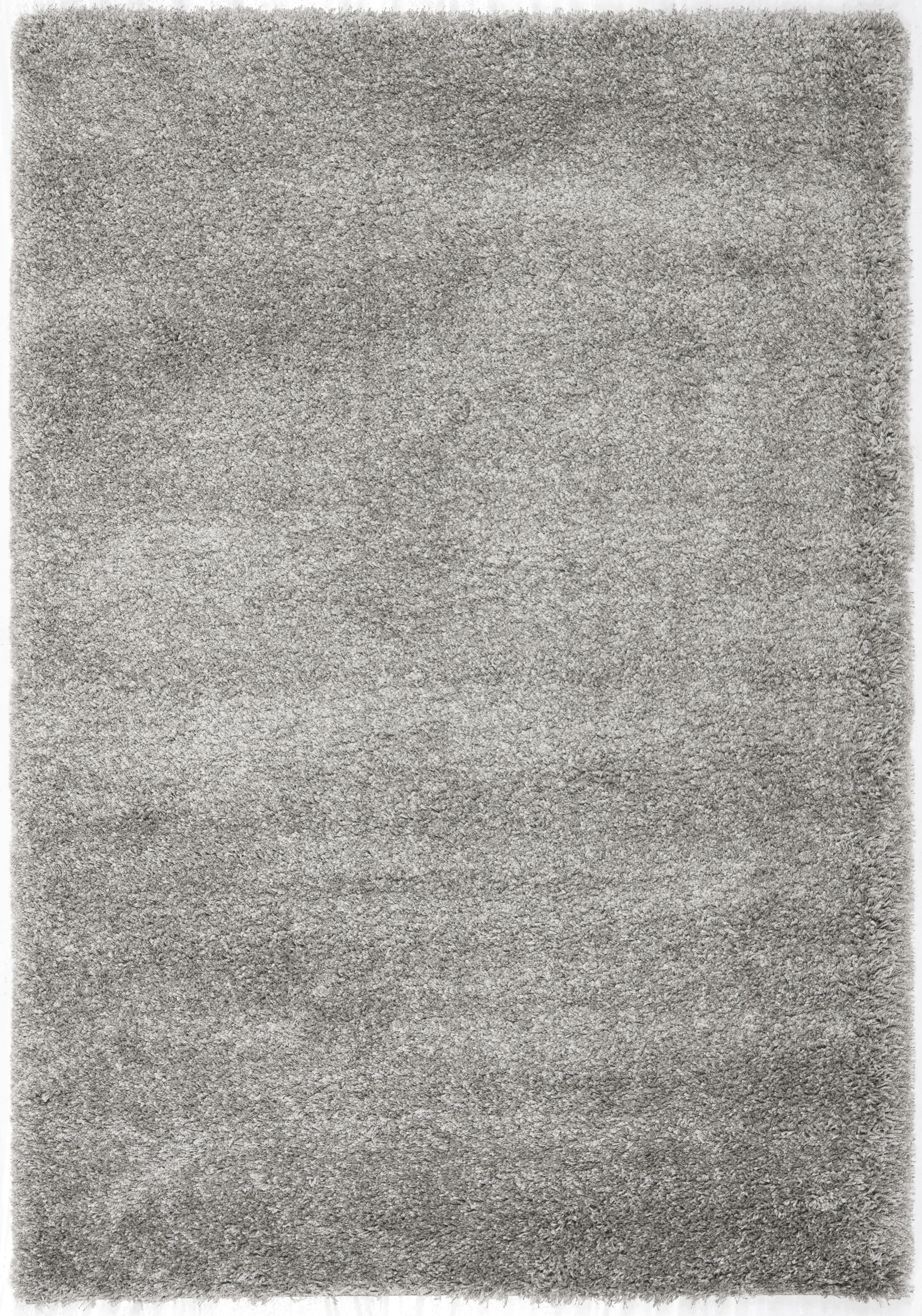 Thaddeus Colorway Silver Area Rug Rug Size: Rectangle 5'3