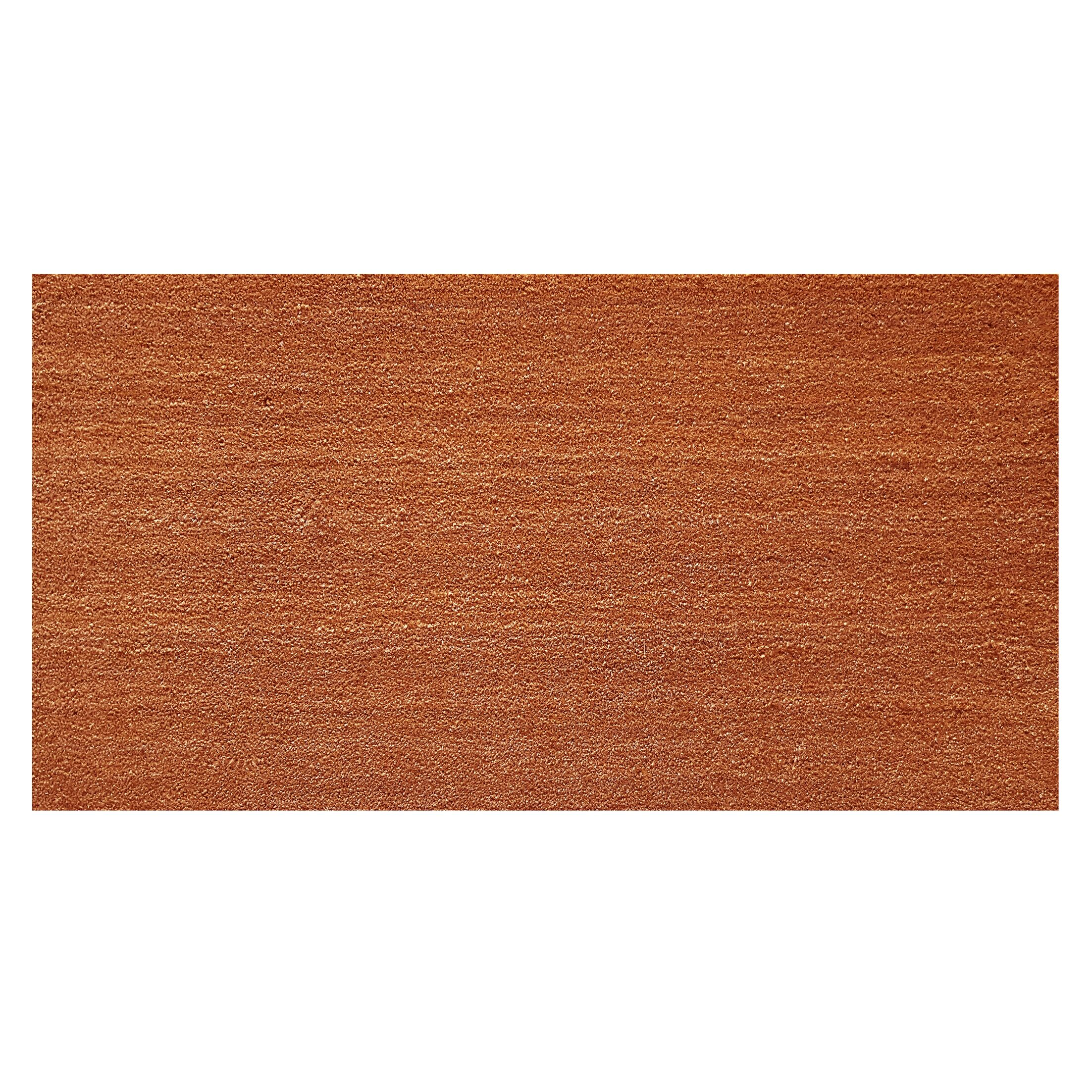 Solid Doormat Mat Size: Rectangle 1'6