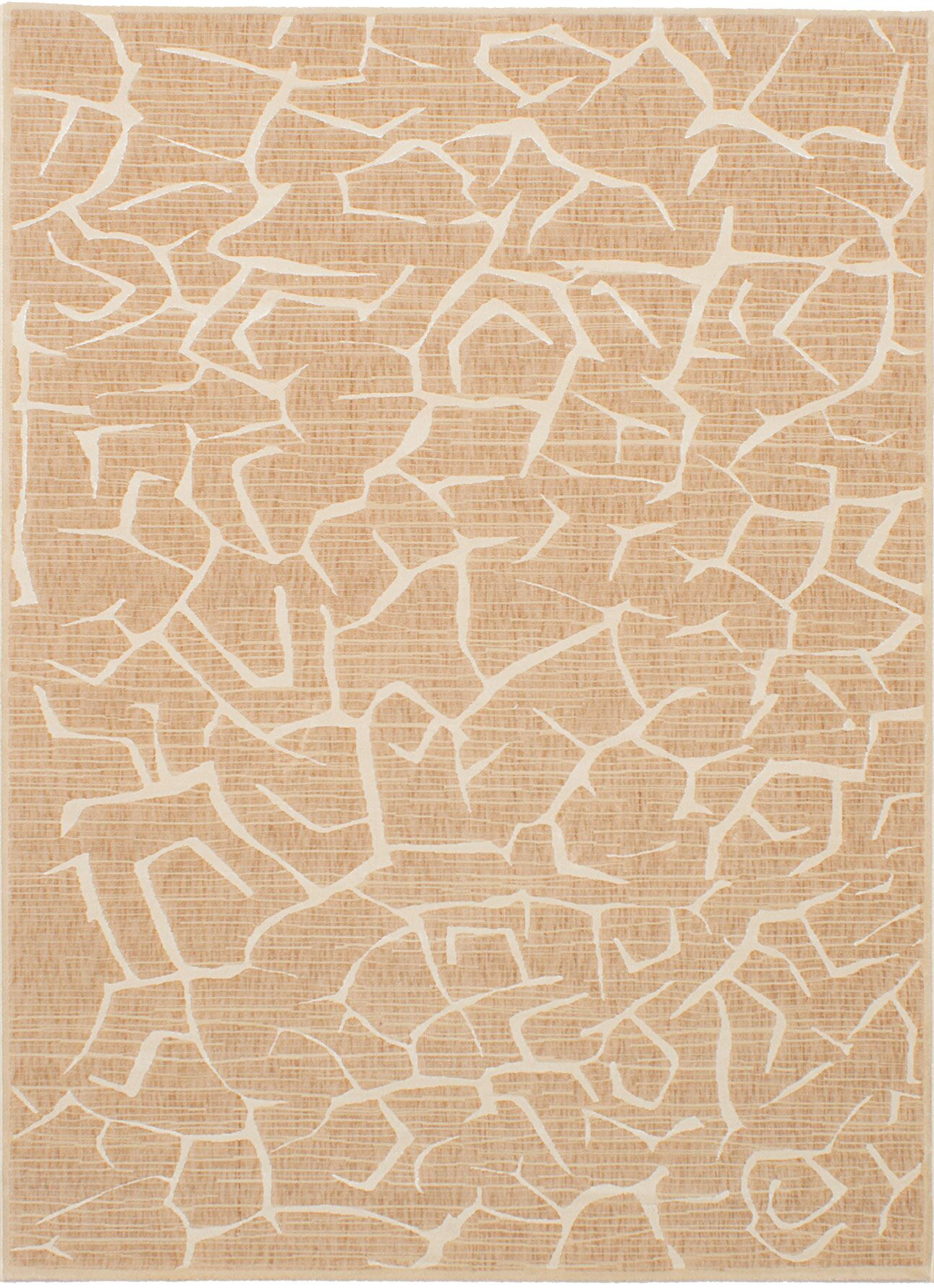 Raftery Tan Area Rug Rug Size: Rectangle 5'6