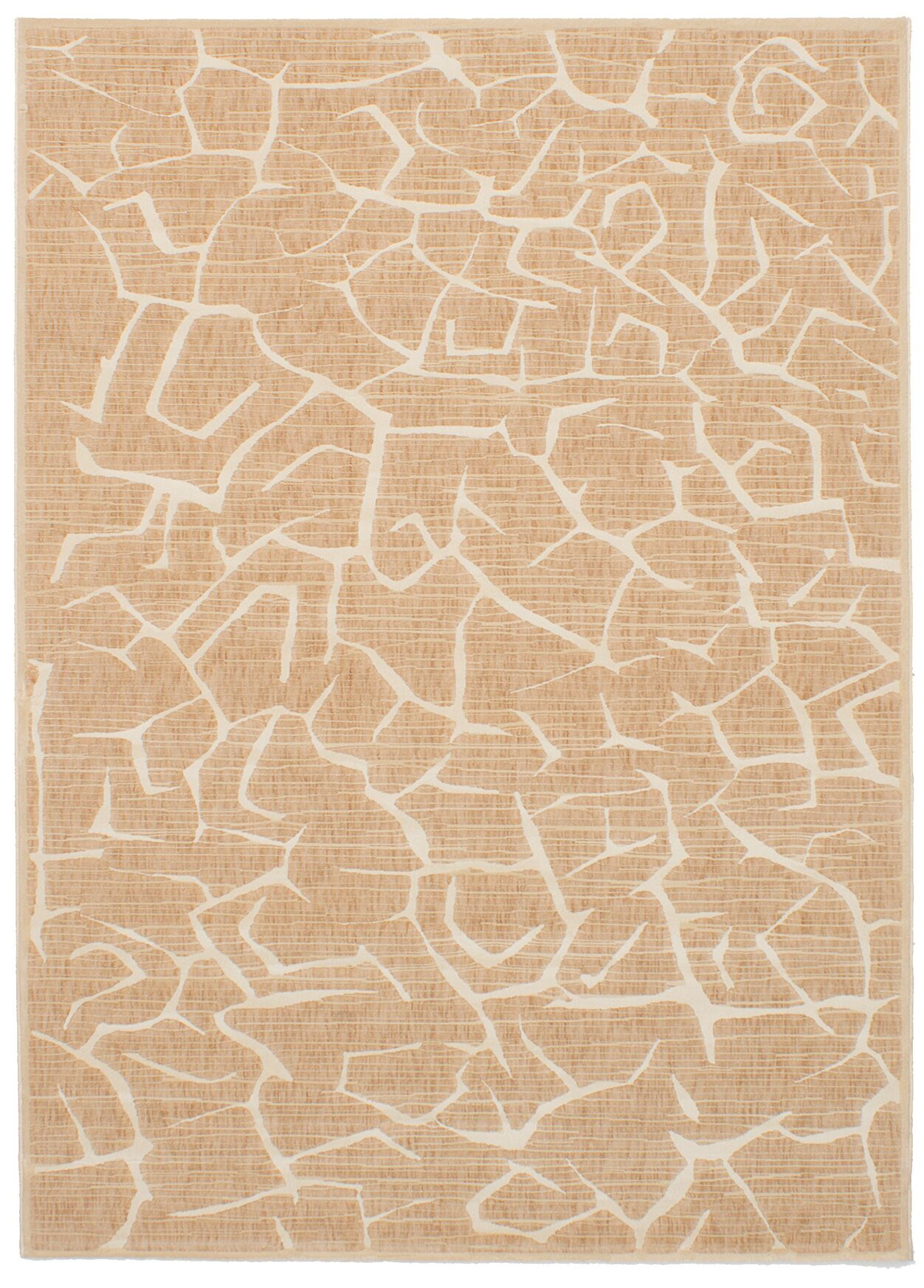 Raftery Tan Area Rug Rug Size: Rectangle 5'5