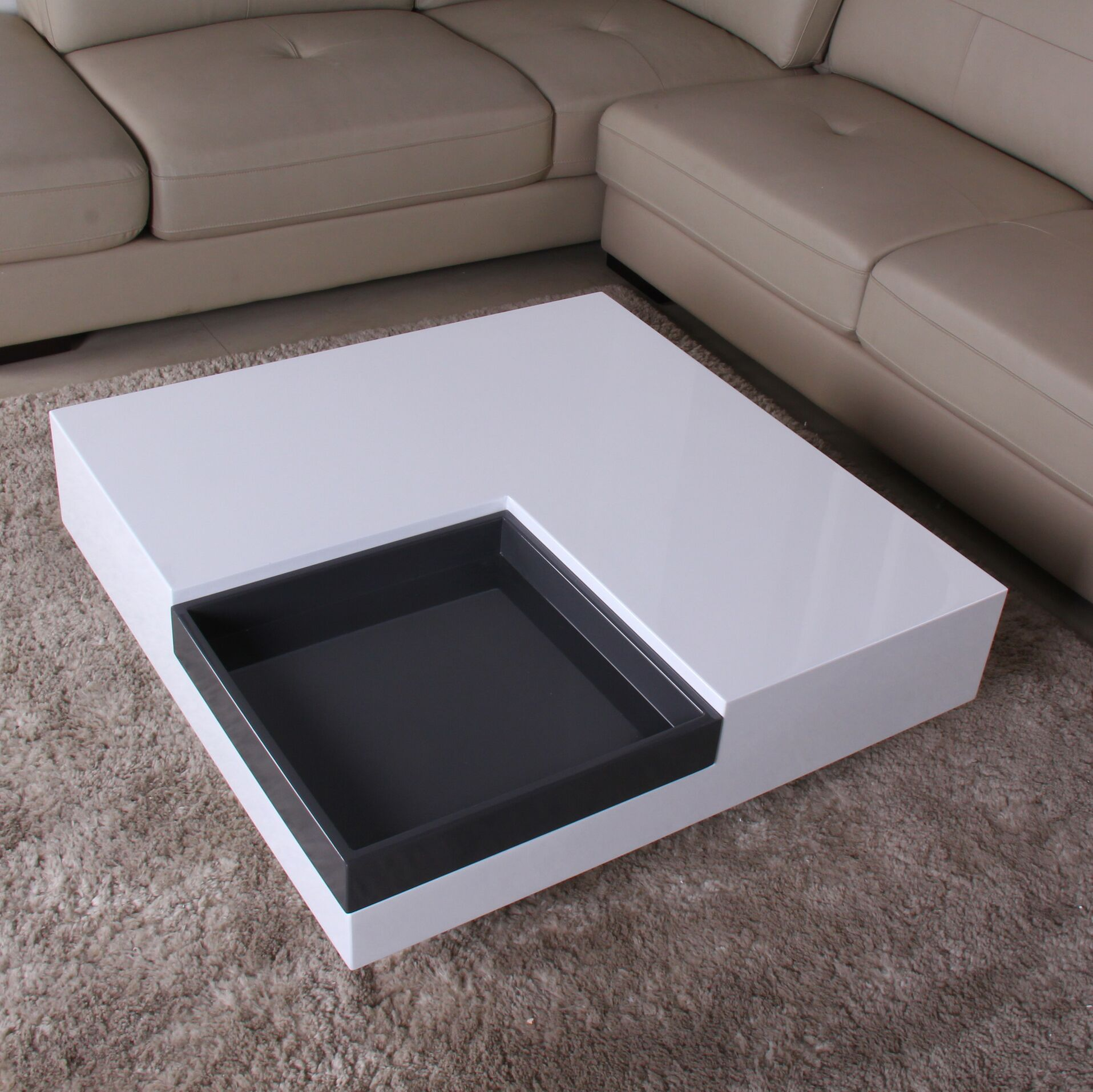 Glossy Functional Coffee Table Color: White / Dark Gray