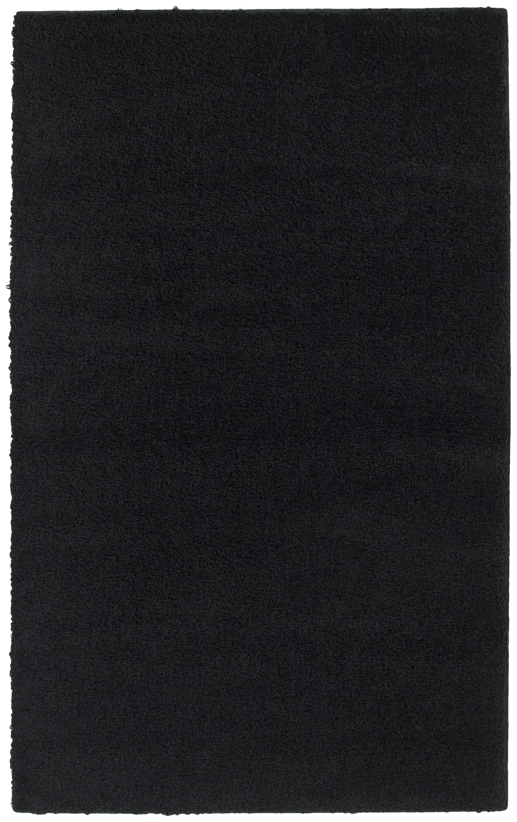 Black Southpointe Area Rug Rug Size: Rectangle 5' x 7'