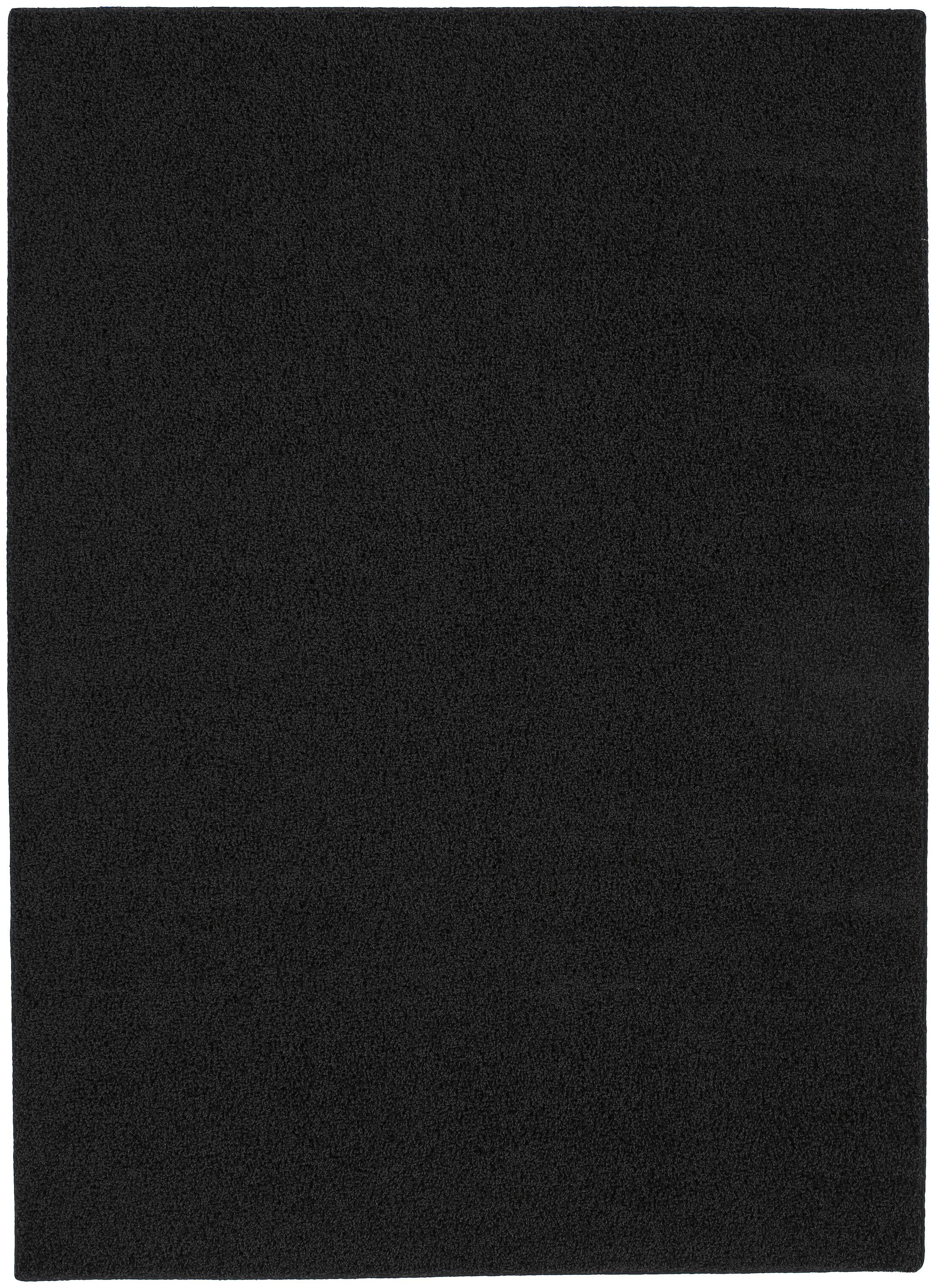 Blackest Black Shazaam Area Rug Rug Size: 4' x 6'