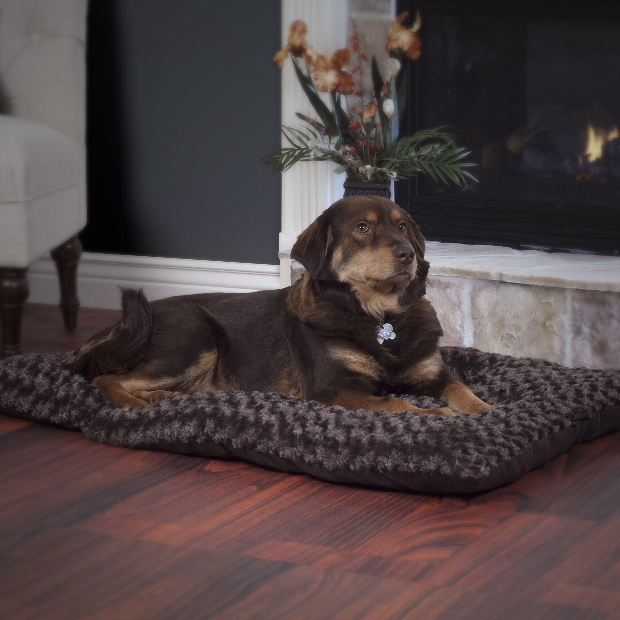Lavish Cushion Furry Dog Pillow Size: Large (35