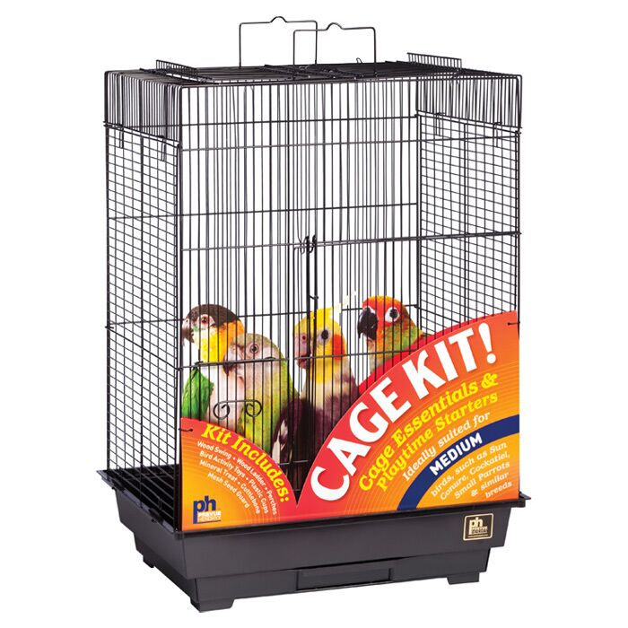 Playtop Bird Starter Kit Color: Black
