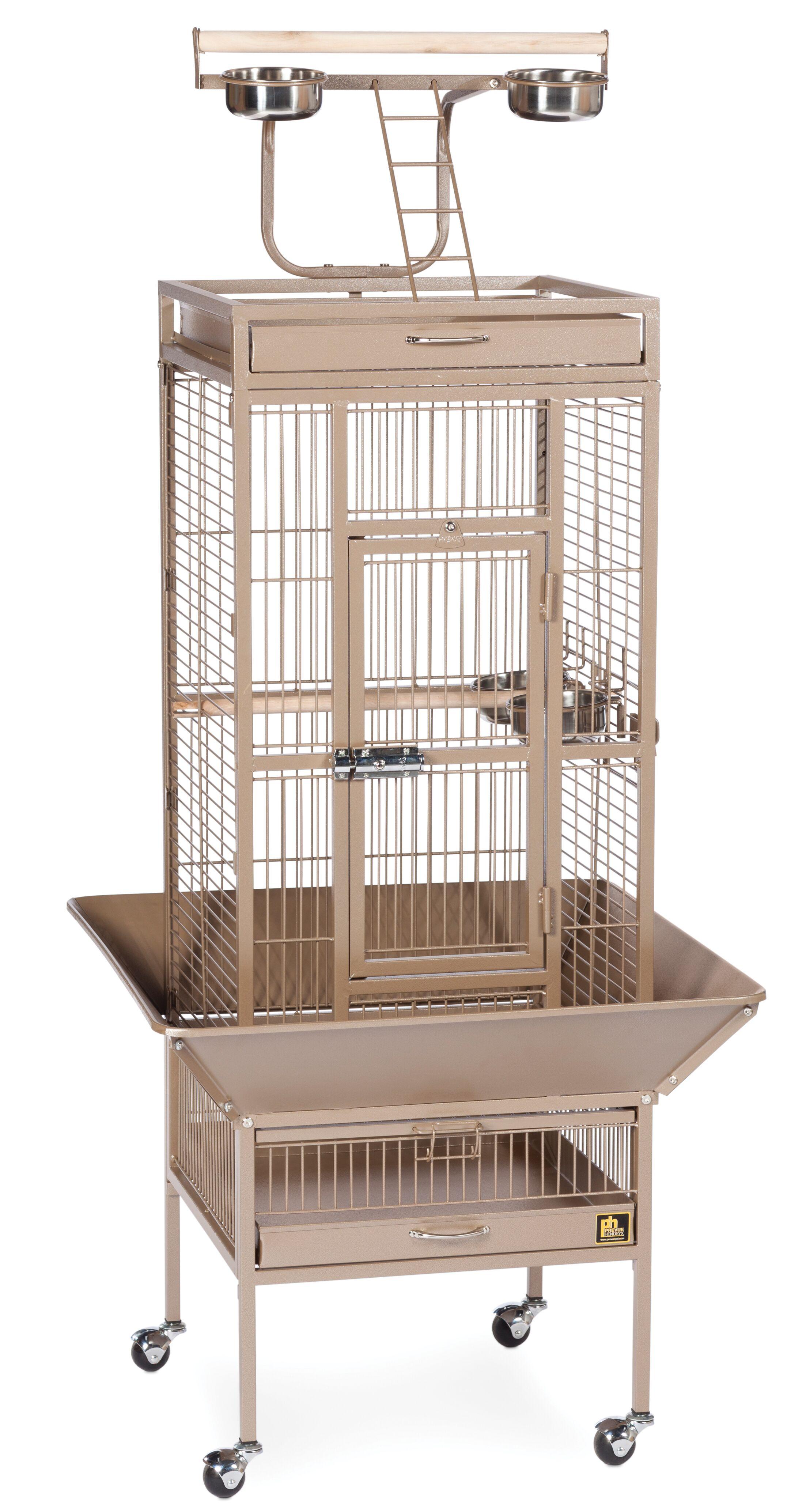 Elektra Bird Cage Color: Coco, Size: Medium