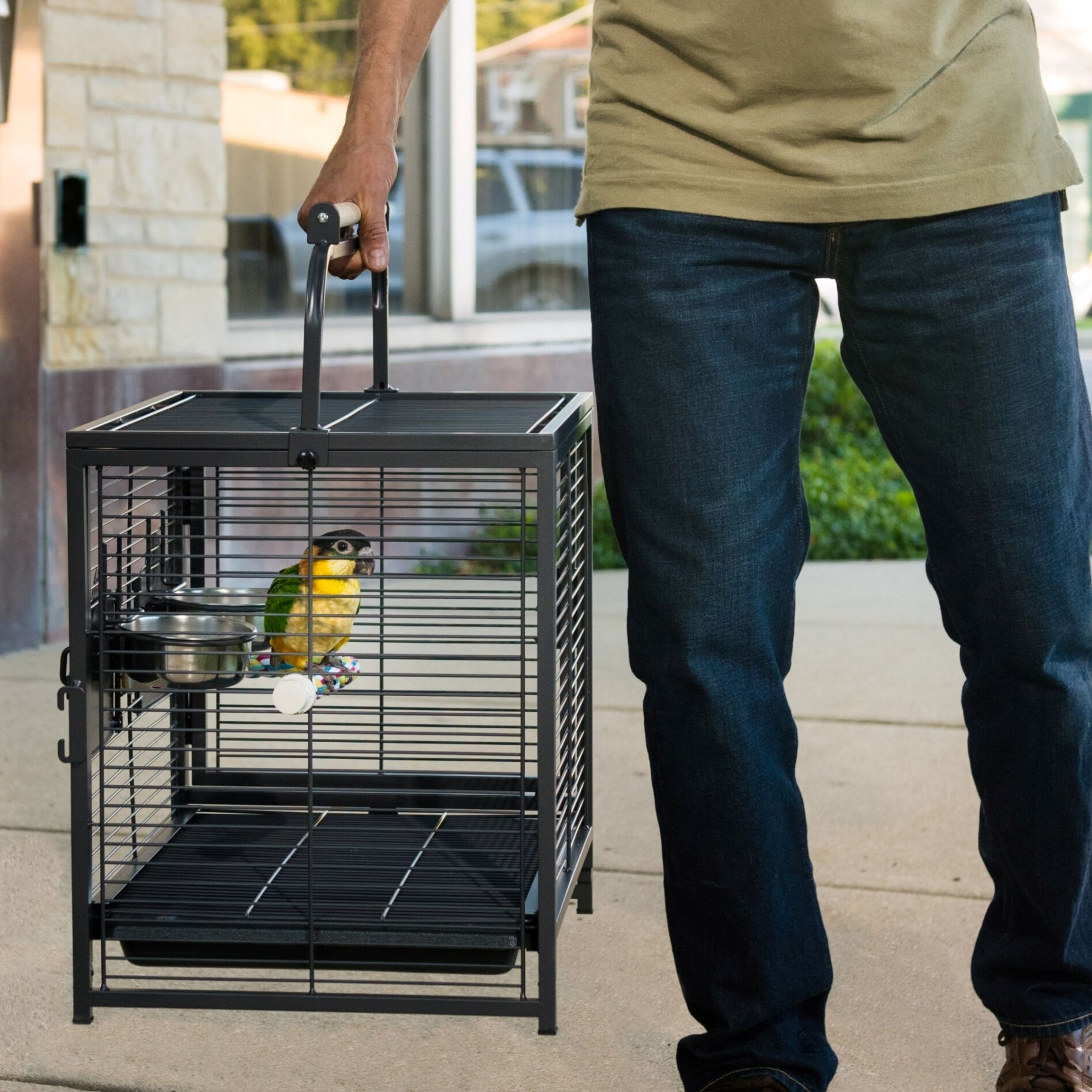 Endymion Travel Carrier Bird Cage with Removable Tray