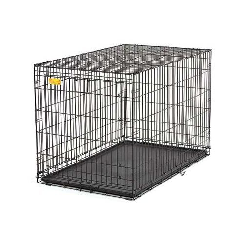 Life Stage A.C.E. Single Door Pet Crate Size: Extra Extra Small (14.5