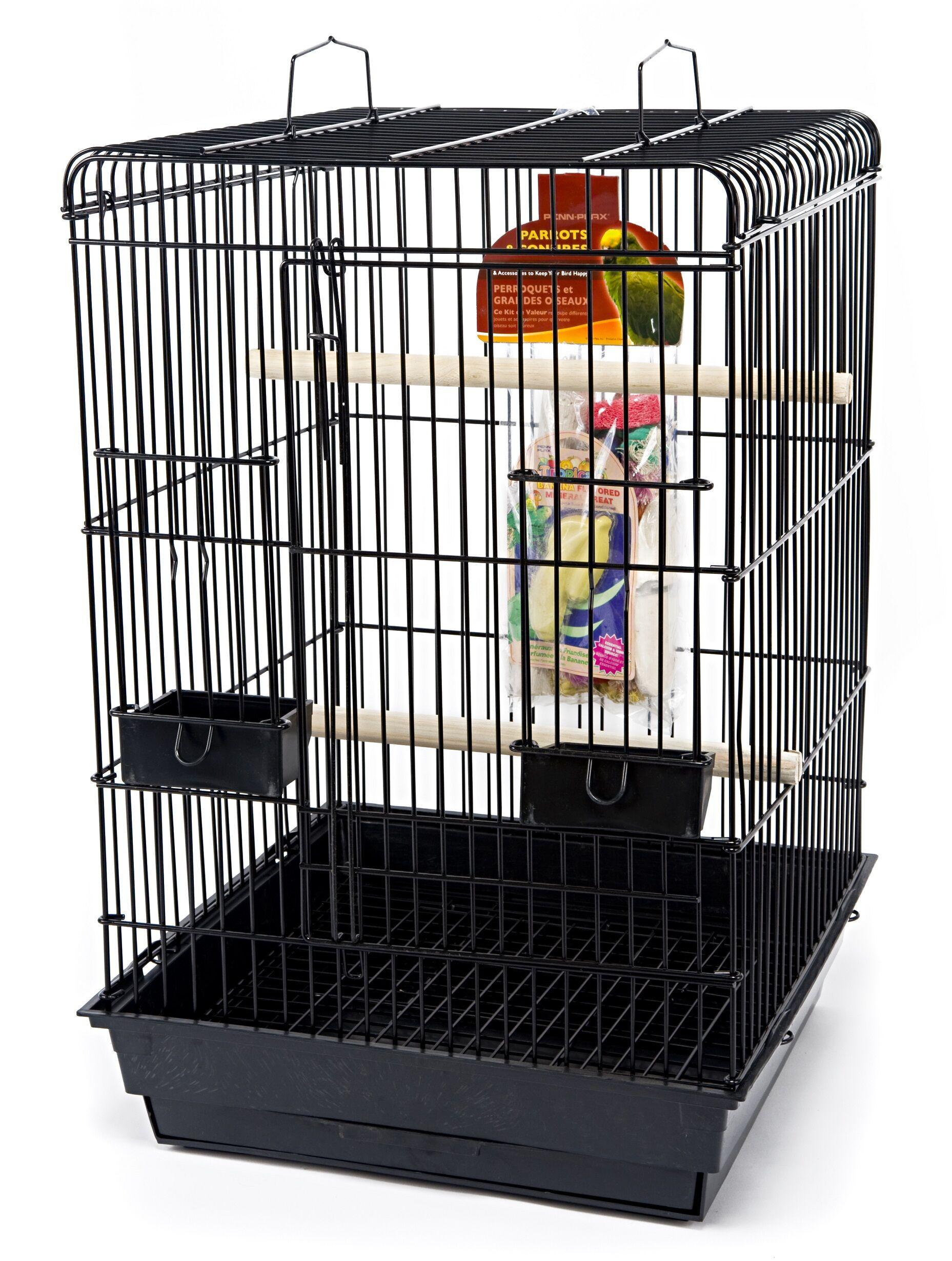 Large Top Starter Bird Kit