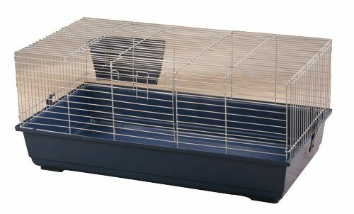 Gus Rabbit Cage Size: 17