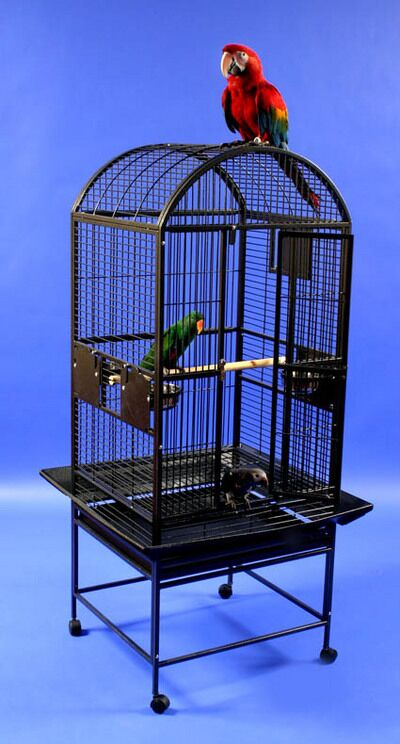 Beatrix Medium Dome Top Bird Cage Color: Pure White