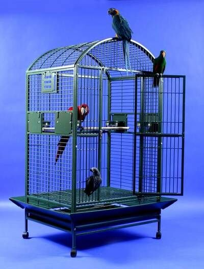 Ingleside Extra Large Dome Top Bird Cage Color: Platinum