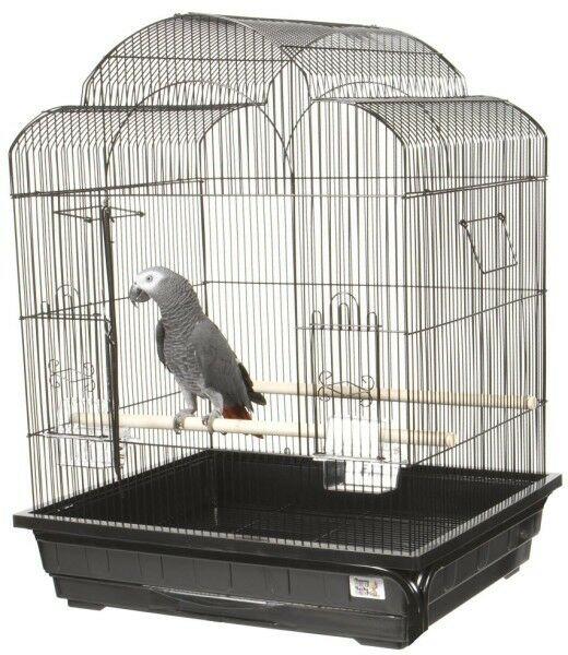 Victorian Small  Bird Cage Color: Black