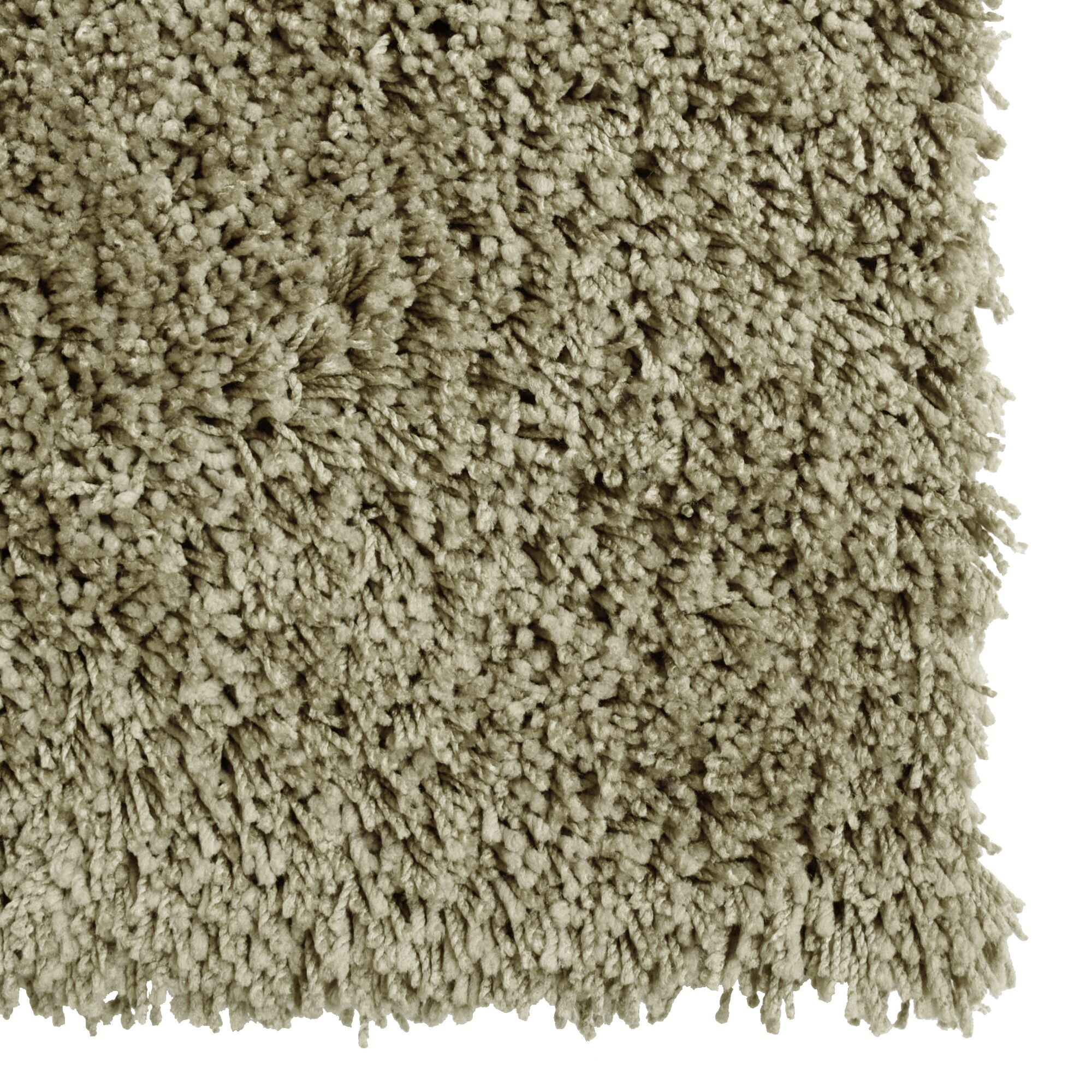Soft Shag Taupe Area Rug Rug Size: Rectangle 9' x 12'