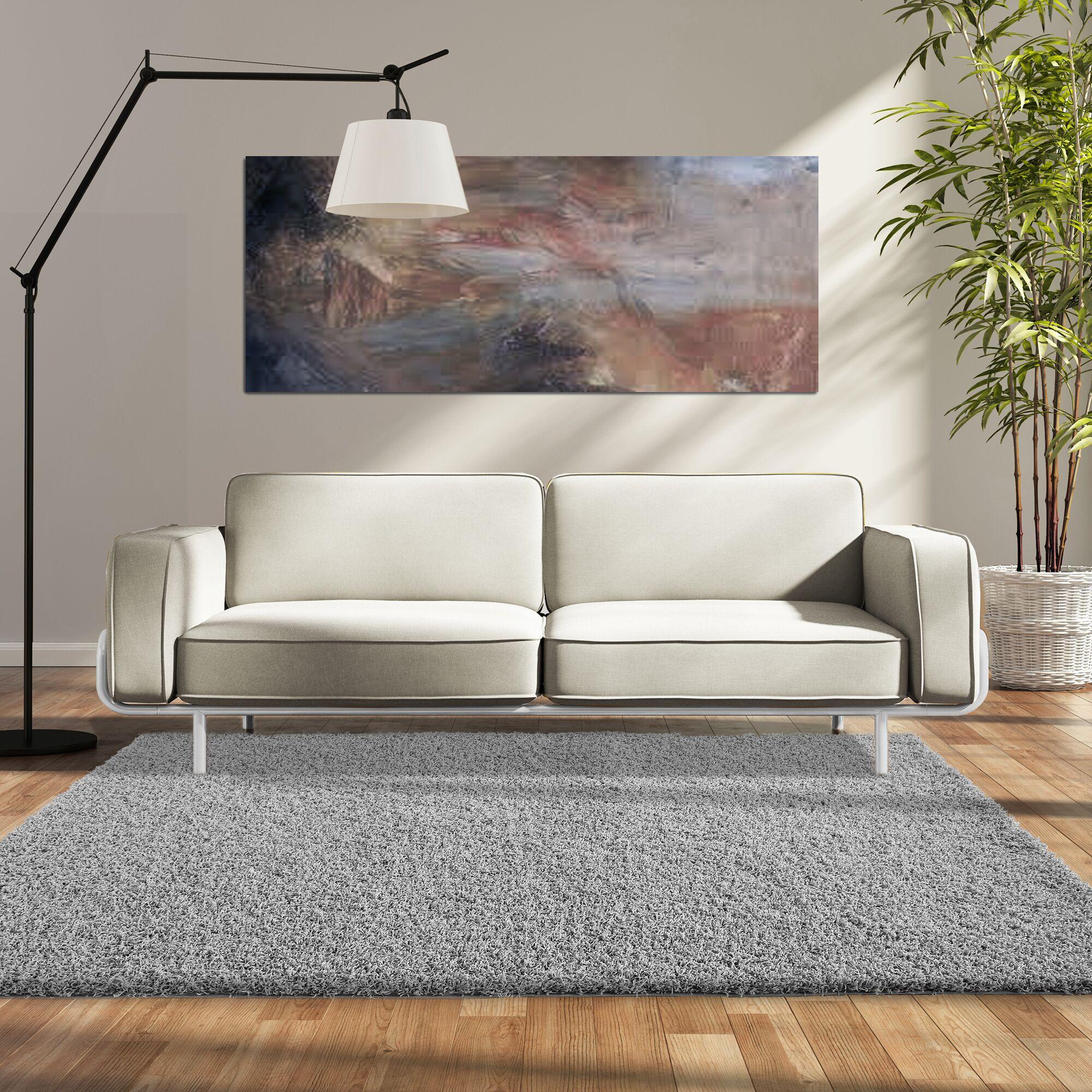 Modern Shag Gray Area Rug Rug Size: 5' x 7'