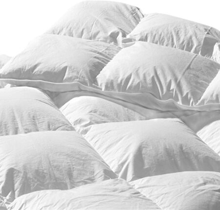 Santa Barbara Lightweight Down Duvet Insert Size: Twin (17 oz)