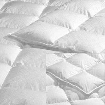 Hutterite All Season Goose Down Duvet Fill Size: California King (50 oz)