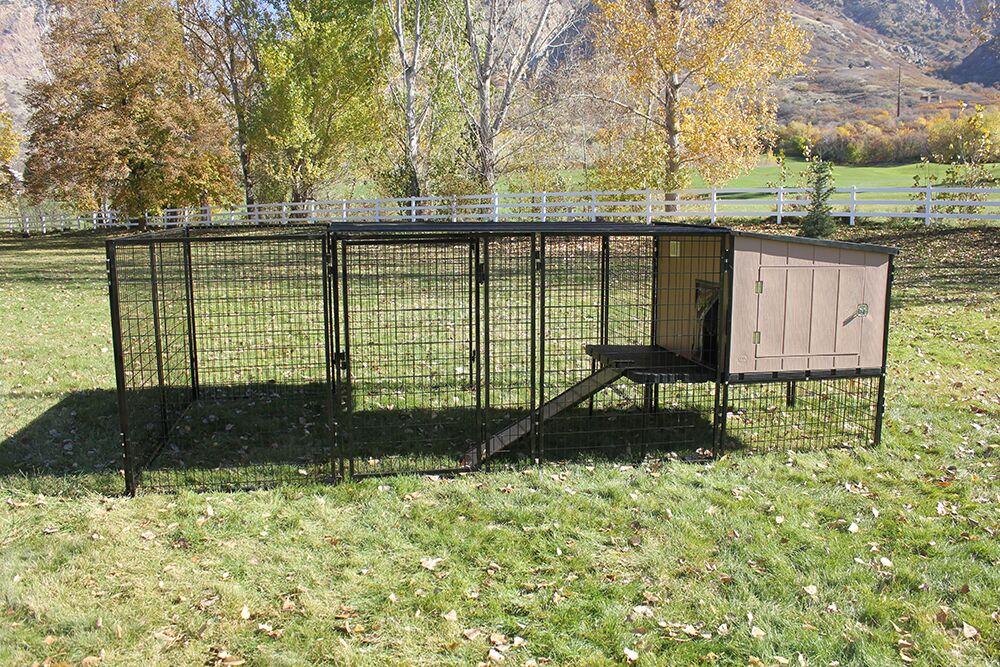 Castle Run Kennel Size: 4' x 8'