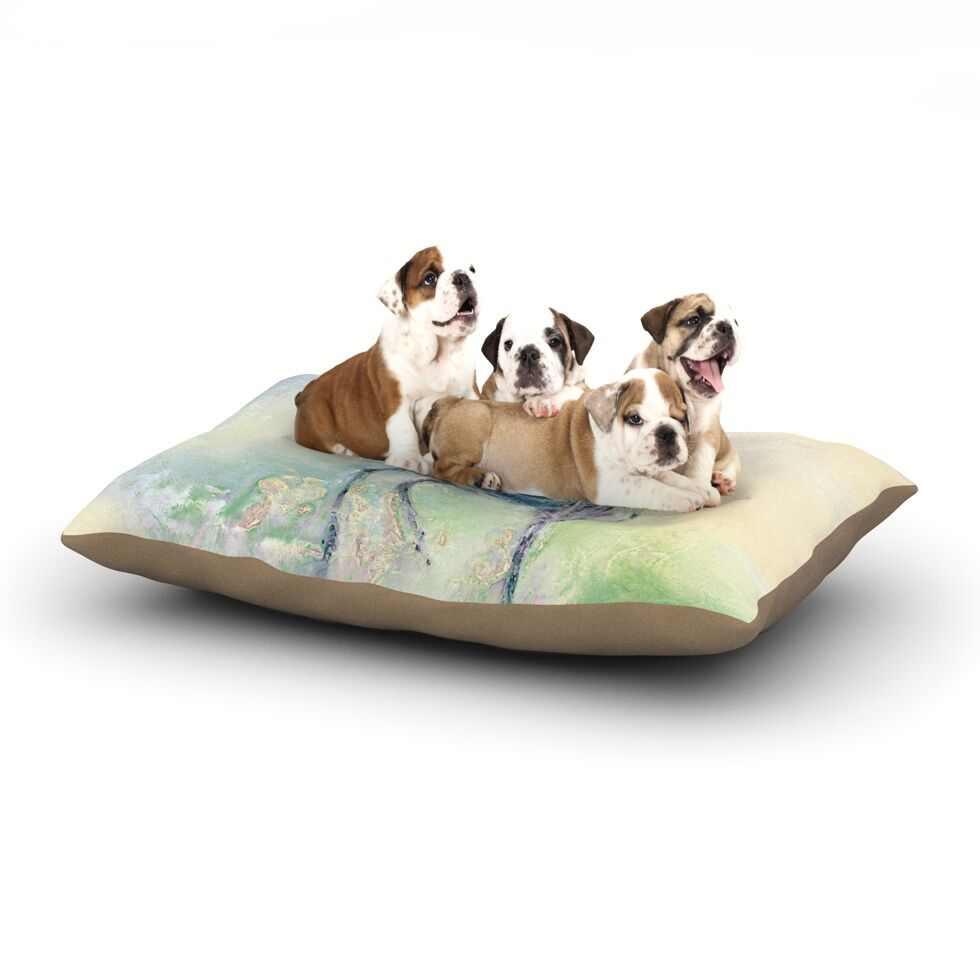 Josh Serafin 'Feast' Dog Pillow with Fleece Cozy Top Size: Small (40