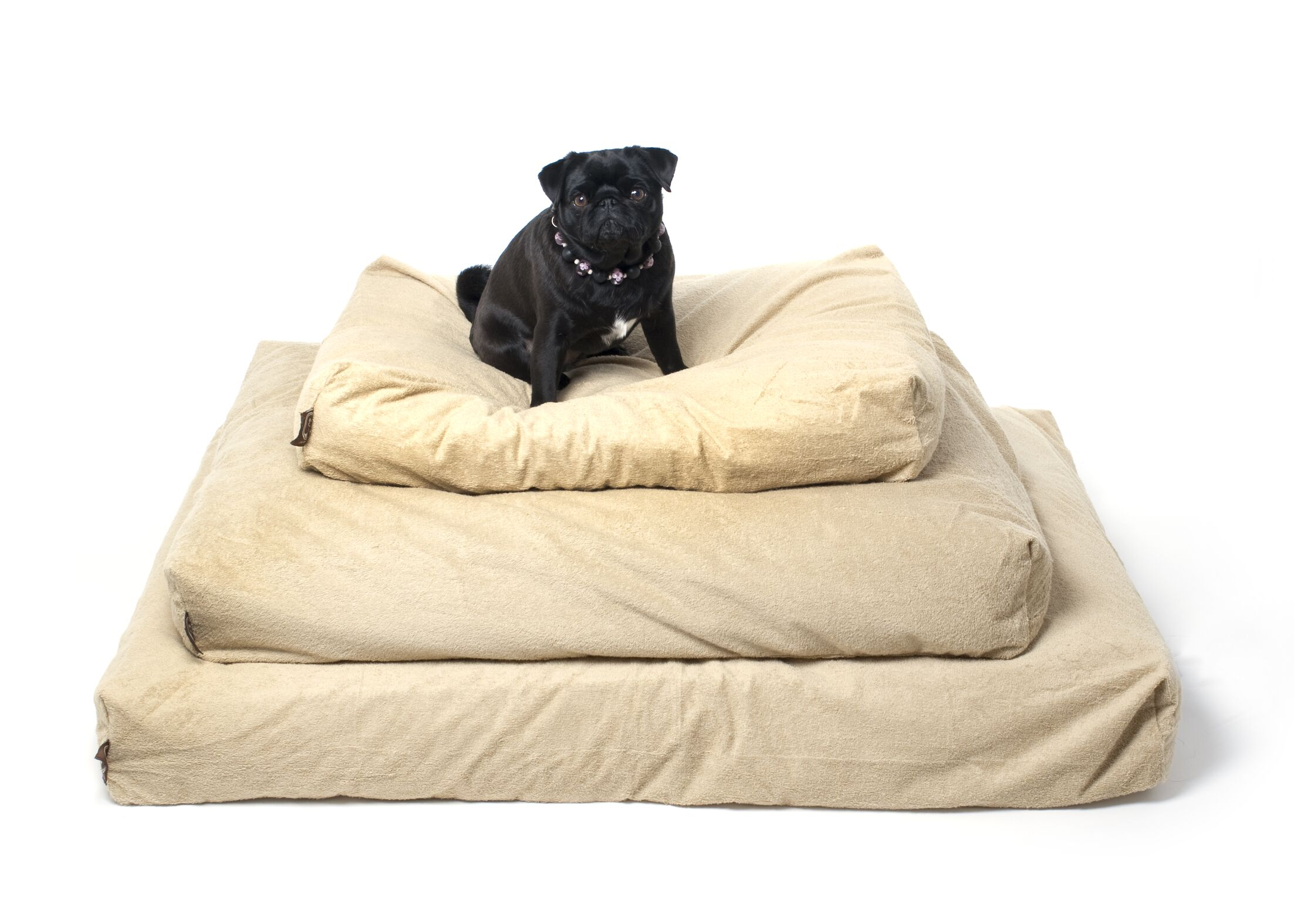 Arianna Piddle-Proof Dog Bed Protector Size: Medium (36