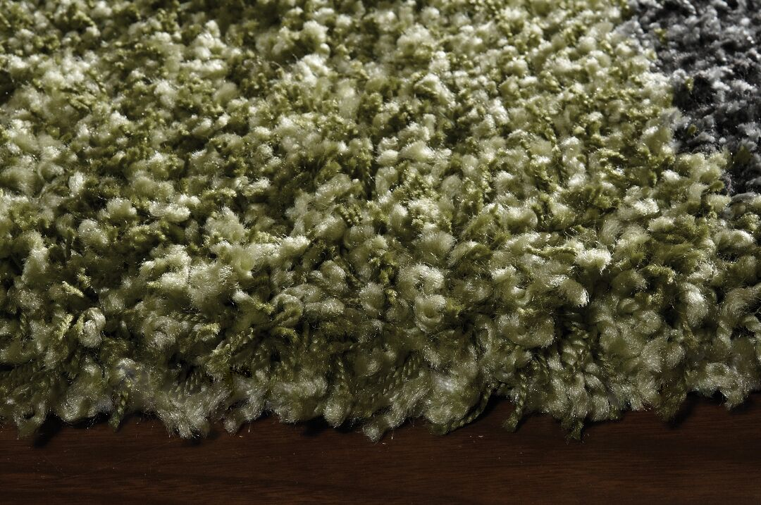 Barry Luxurious Green Area Rug Rug Size: 5'3