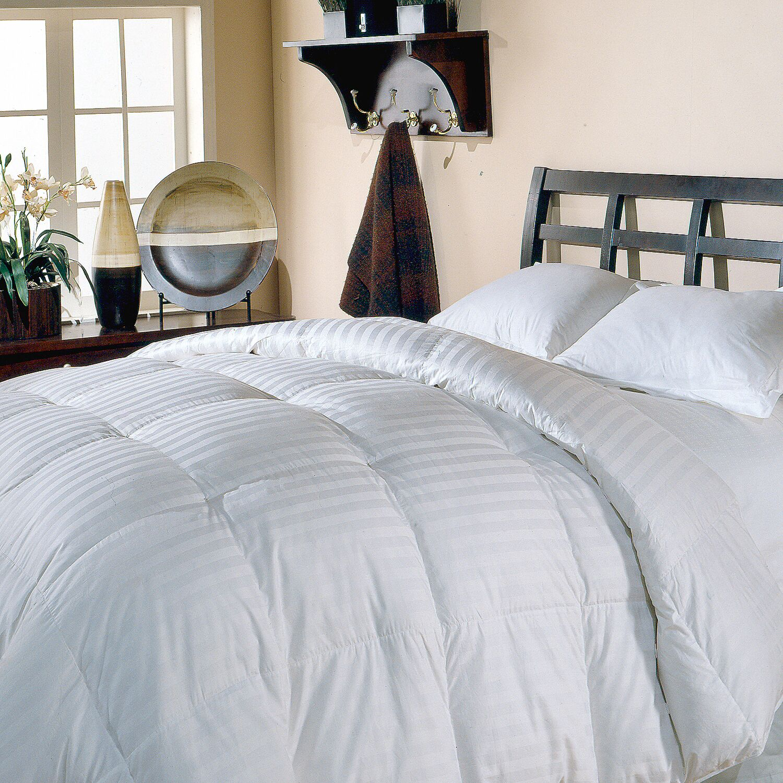 All Season Comforter Size: Twin