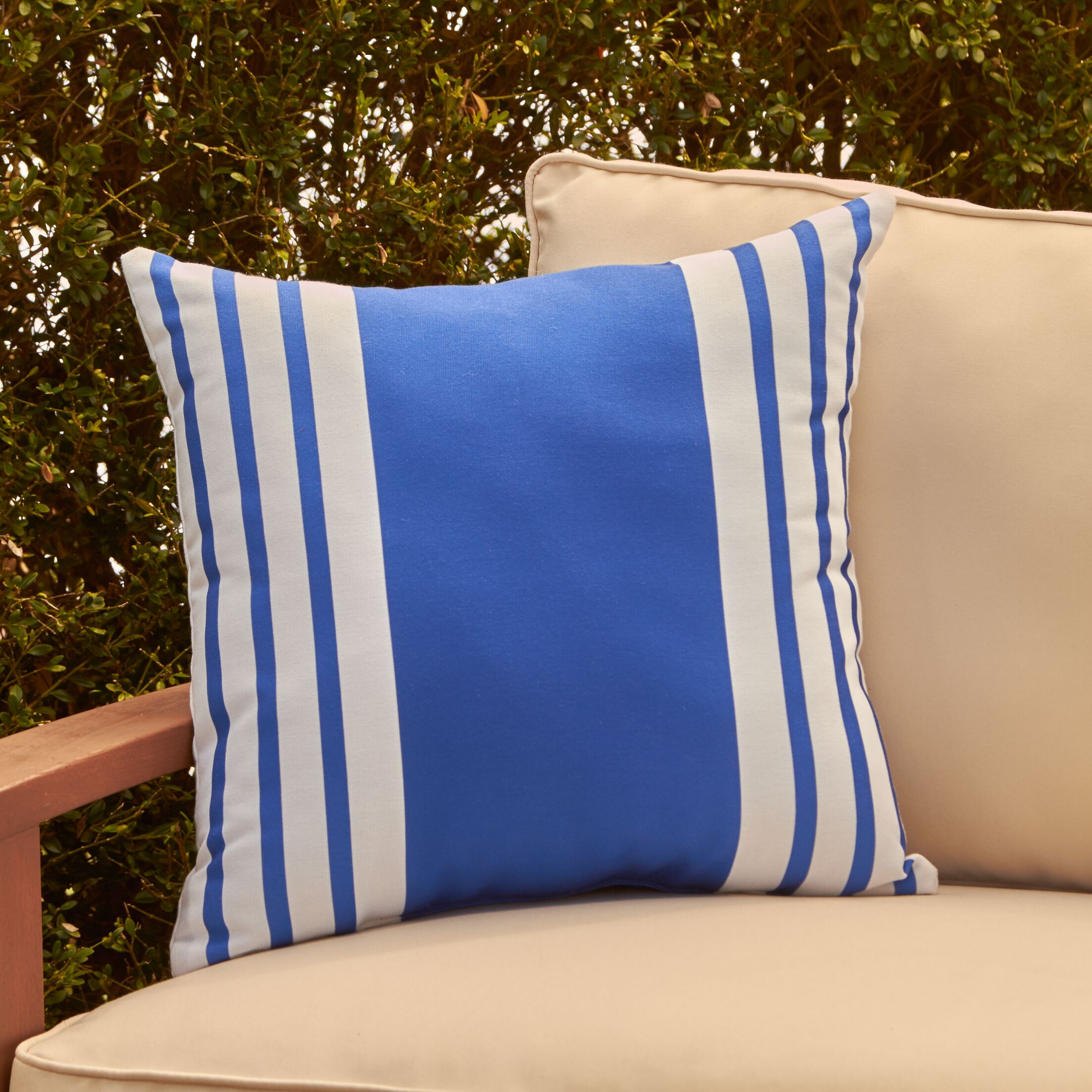 Jada Outdoor Pillow Color: Lake Blue, Size: 20