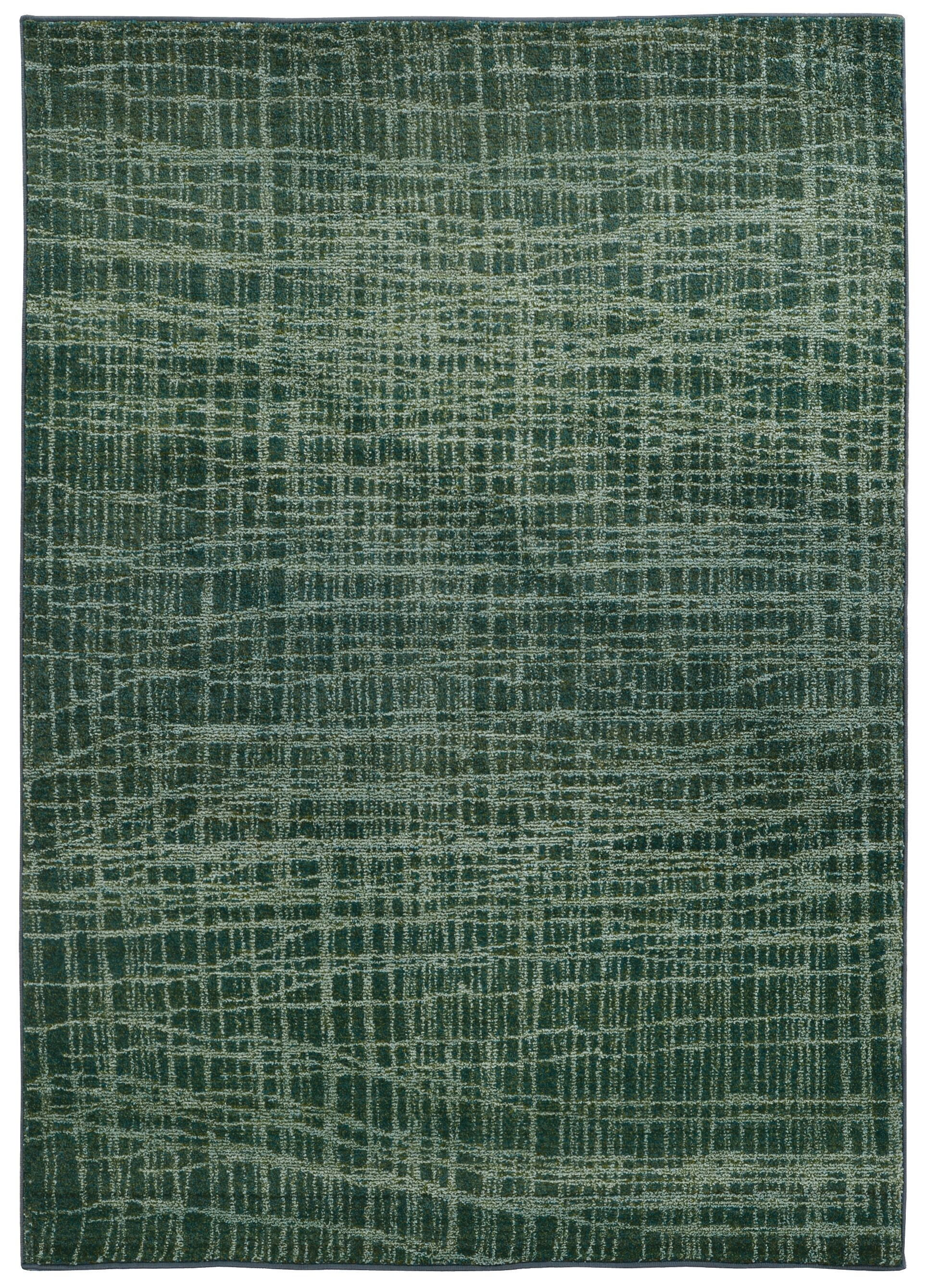 Expressions Abstract Green Area Rug Rug Size: Rectangle 4' x 5'9