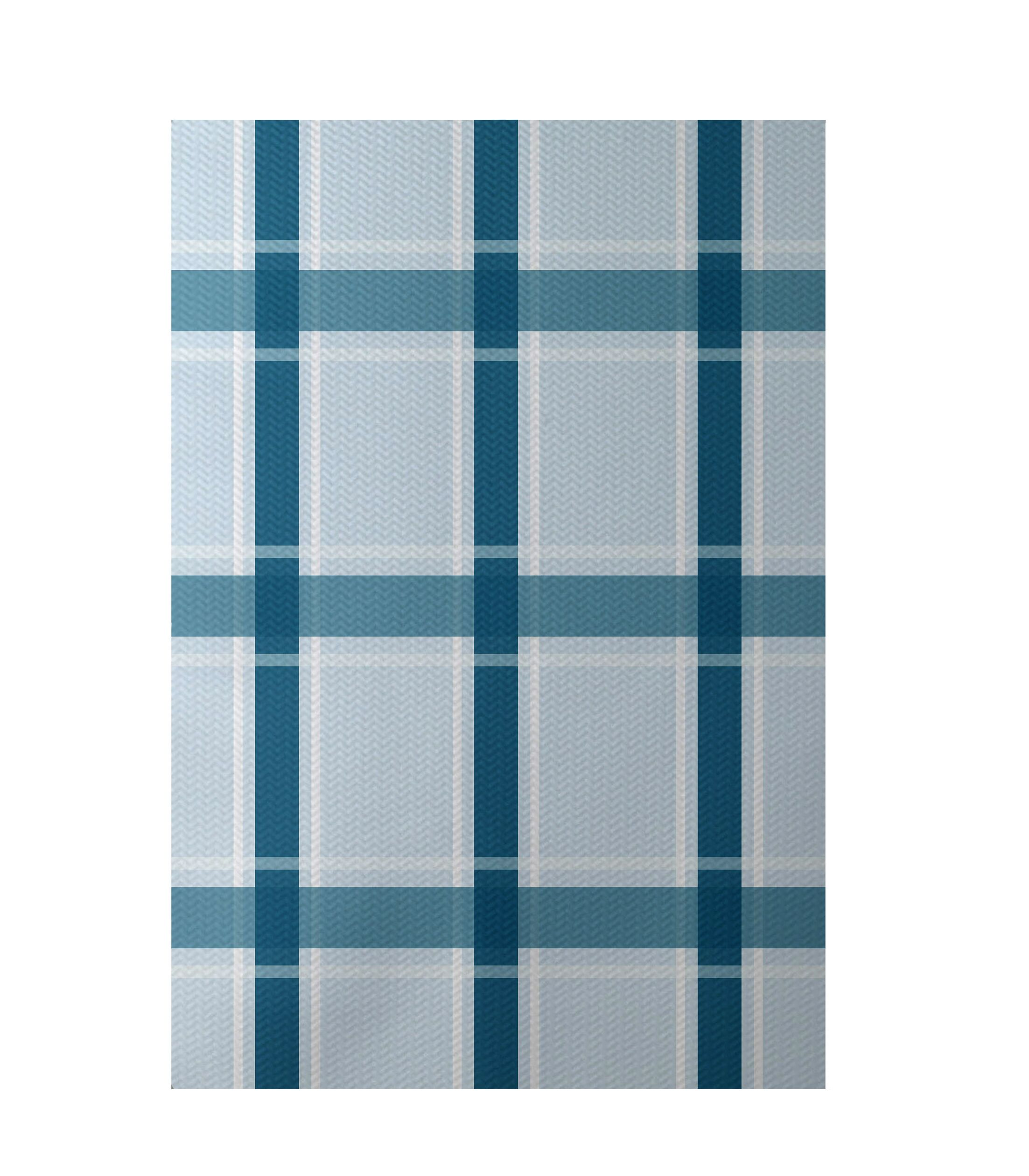 Plaid Hand-Woven Light Blue/Teal Indoor/Outdoor Area Rug Rug Size: Rectangle 4' x 6'