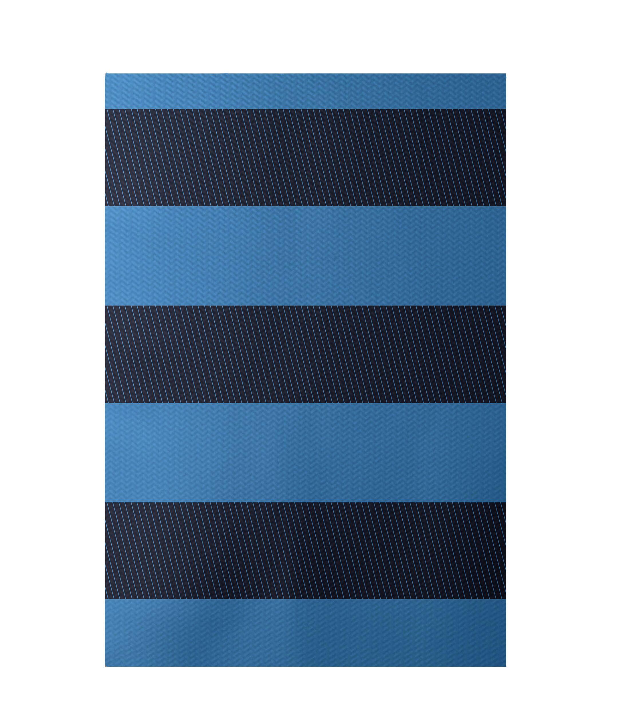 Stripe Blue Indoor/Outdoor Area Rug Rug Size: Rectangle 4' x 6'