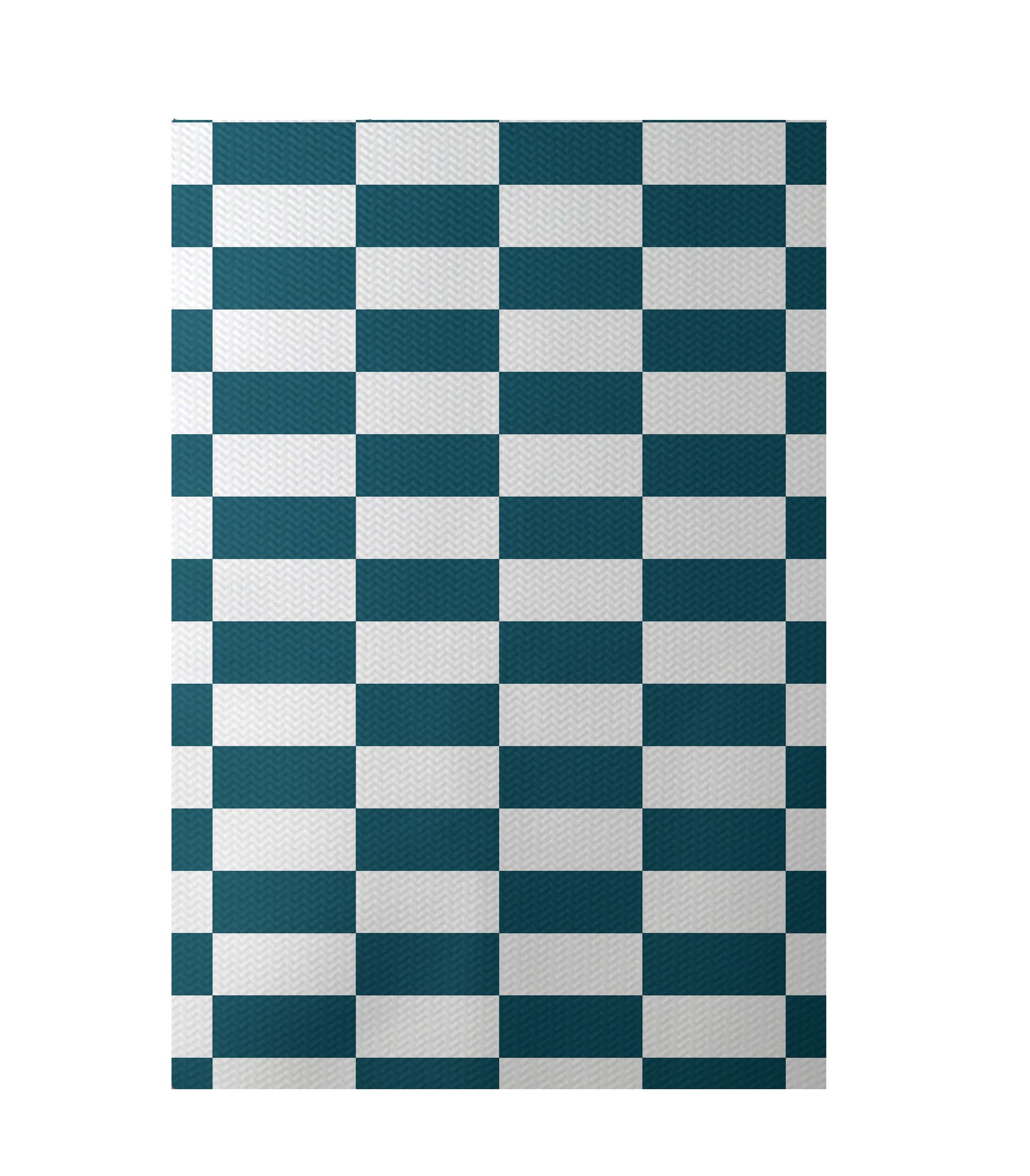 Plaid Hand-Woven Teal Indoor/Outdoor Area Rug Rug Size: Rectangle 4' x 6'