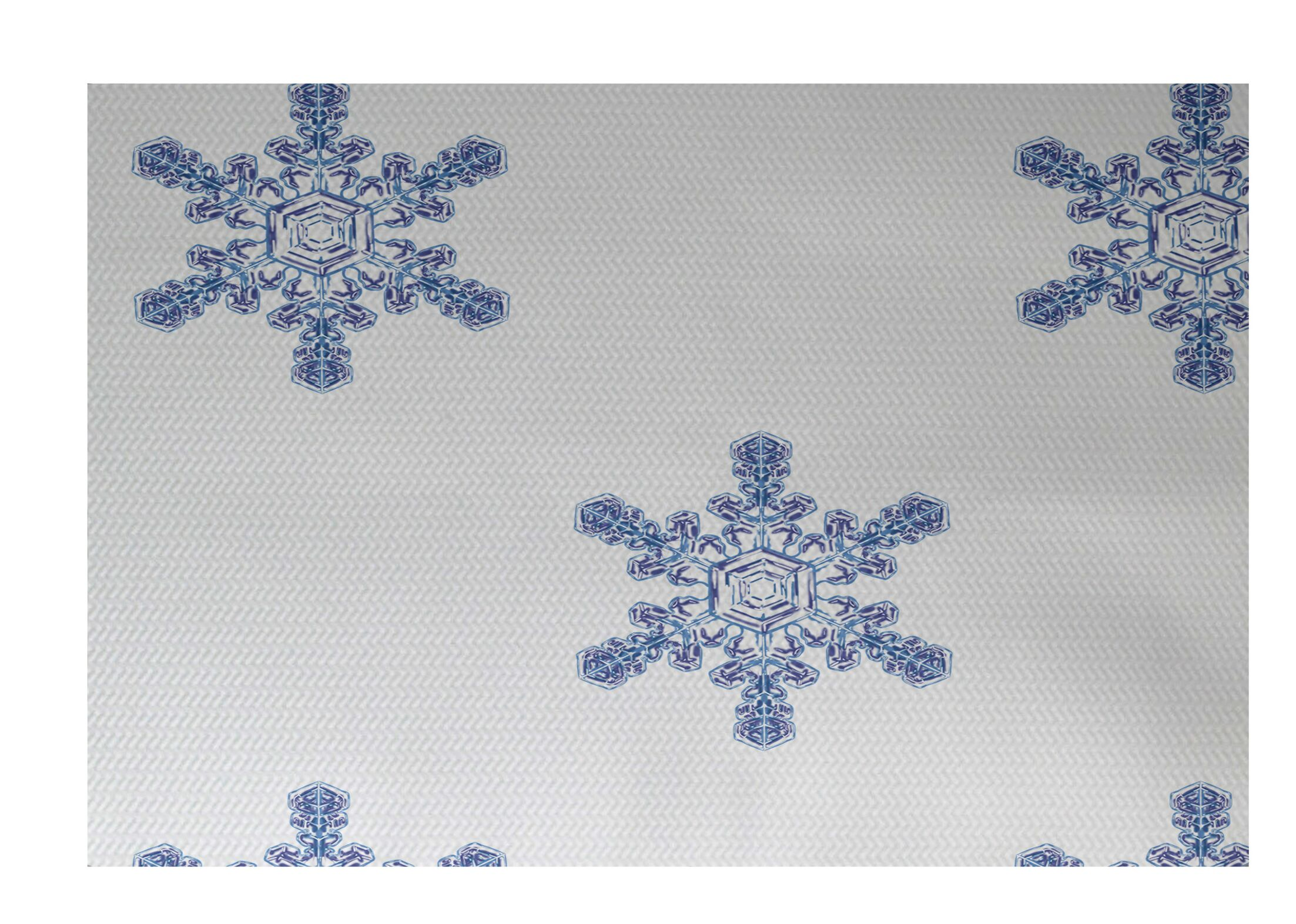 Flurries Decorative Holiday Print White Indoor/Outdoor Area Rug Rug Size: Rectangle 4' x 6'