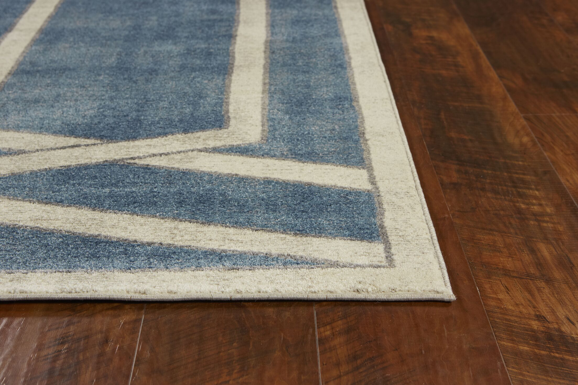 Winston Directional Border Teal Area Rug Rug Size: Rectangle 3'3