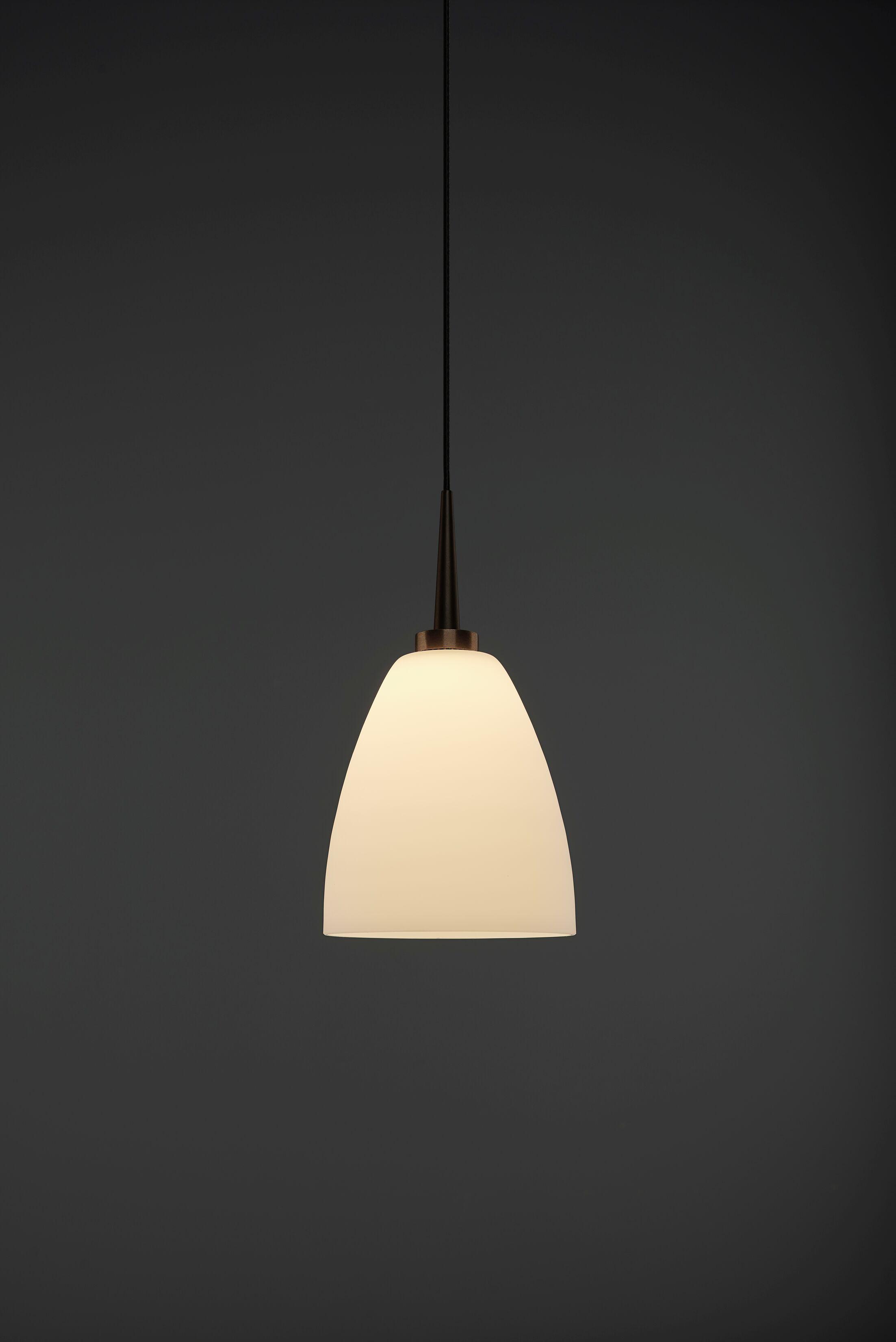 Tara 1-Light Cone Pendant Color: Bronze