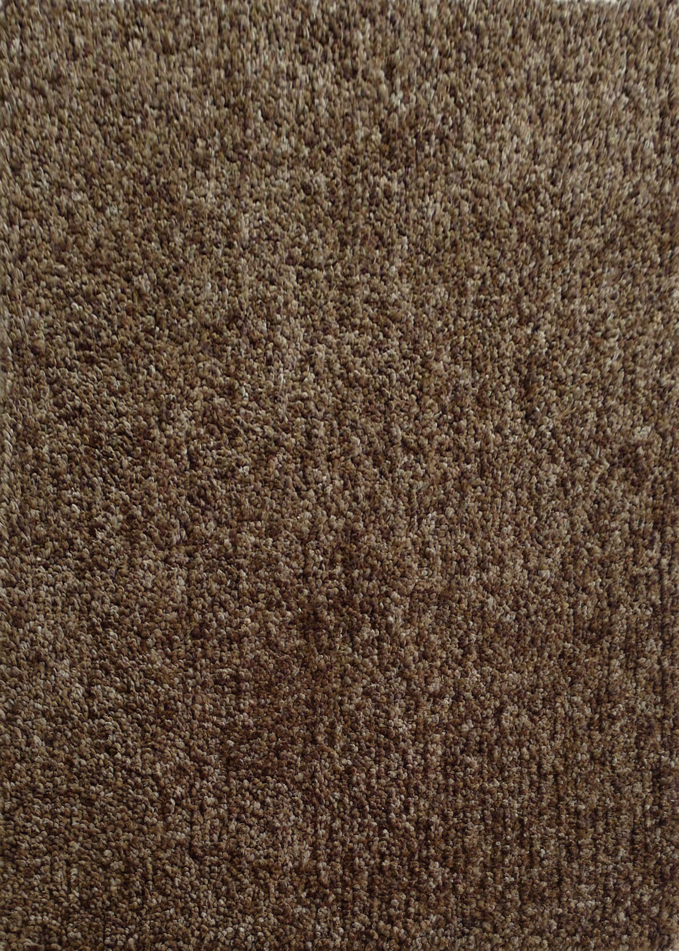 Harmony 2 Toned Winter Gray Shag Area Rug Rug Size: Rectangle 8' x 10'