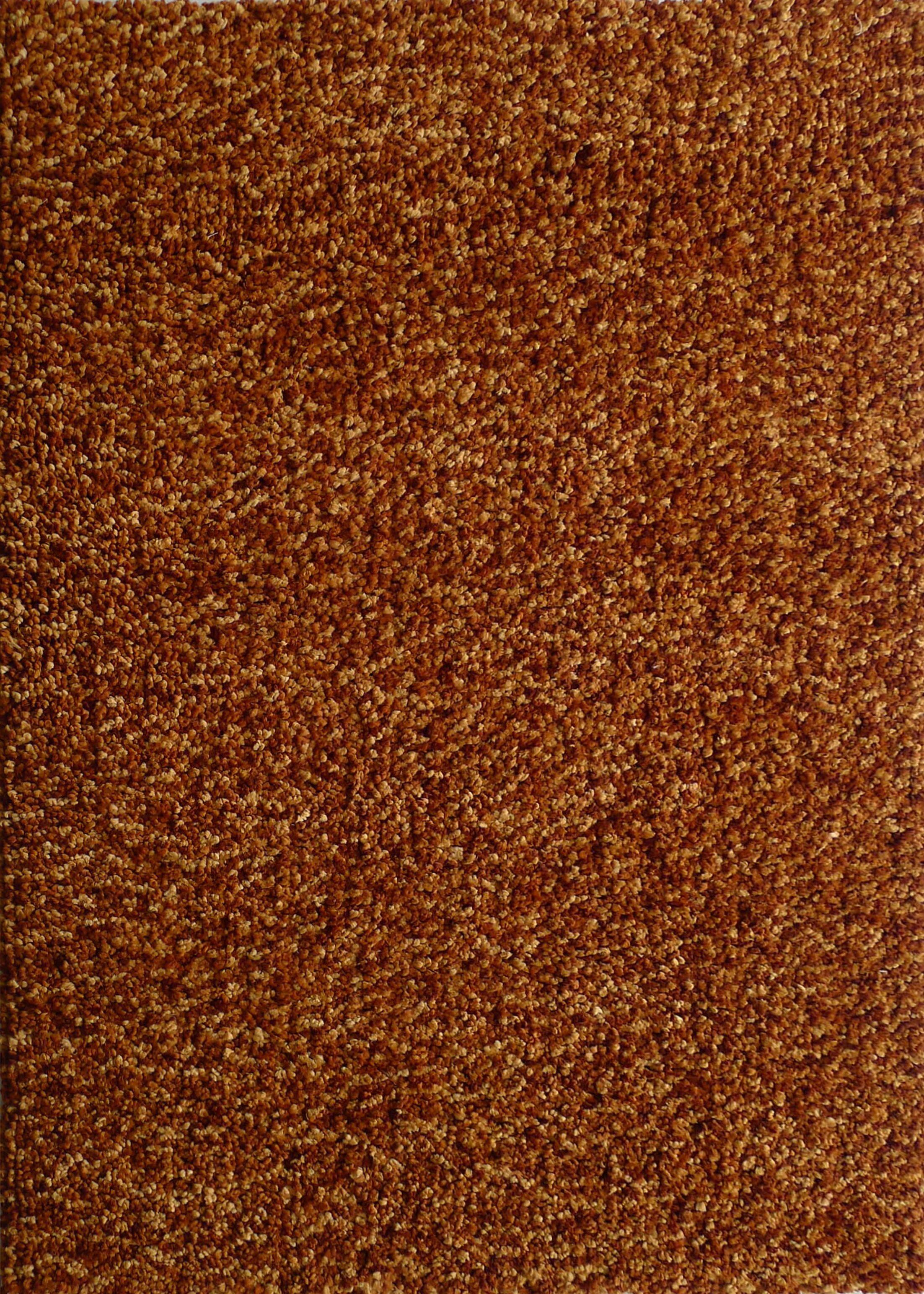 Harmony 2 Toned Terra Cotta Shag Area Rug Rug Size: 8' x 10'