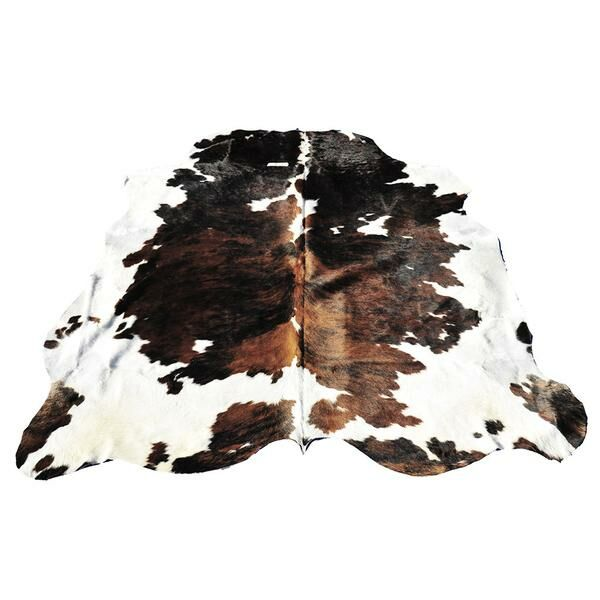 Black/Brown Area Rug
