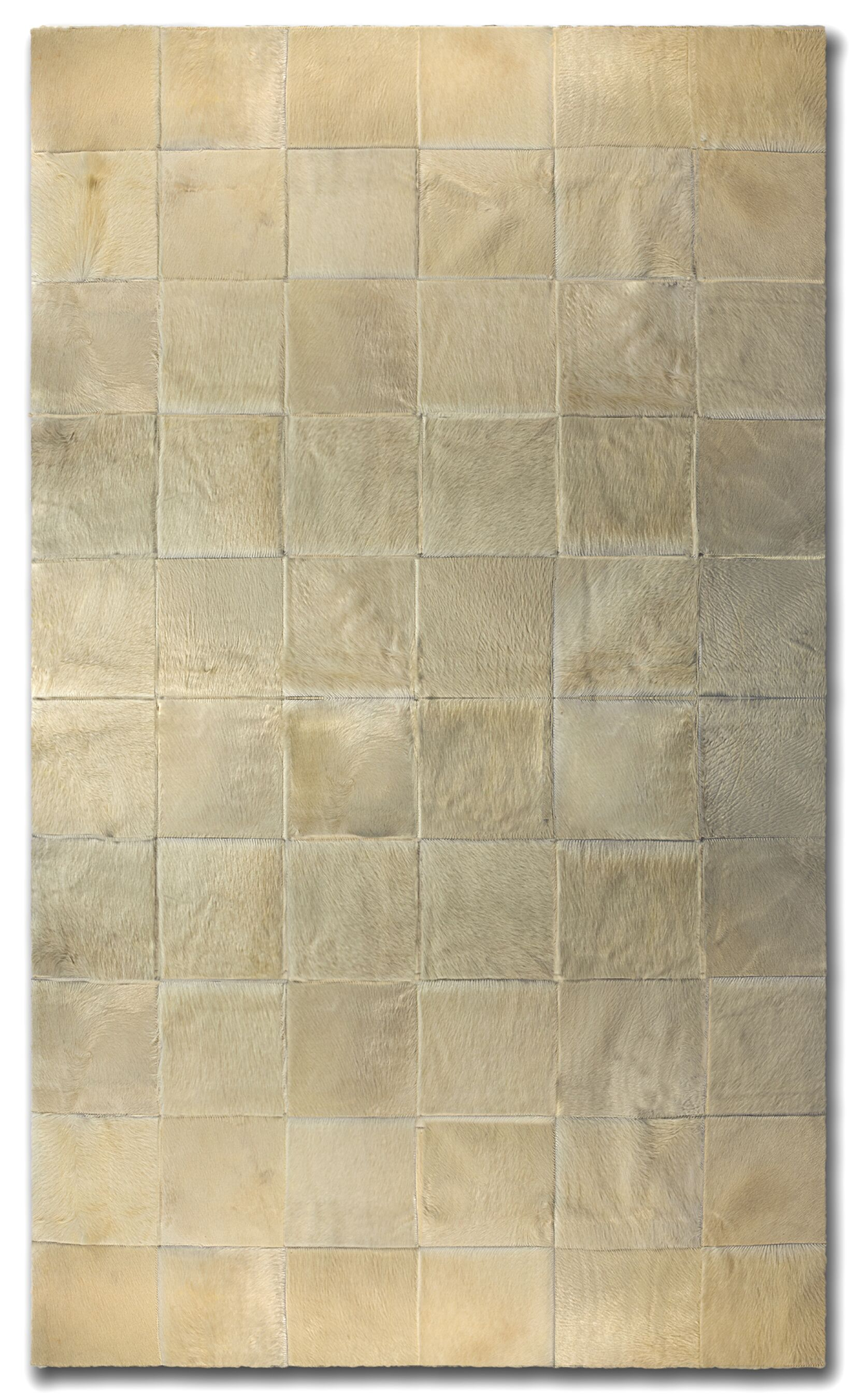 Aayush Ten Square Patch Hand-Woven Cowhide Beige Area Rug  Rug Size: 8' x 10'