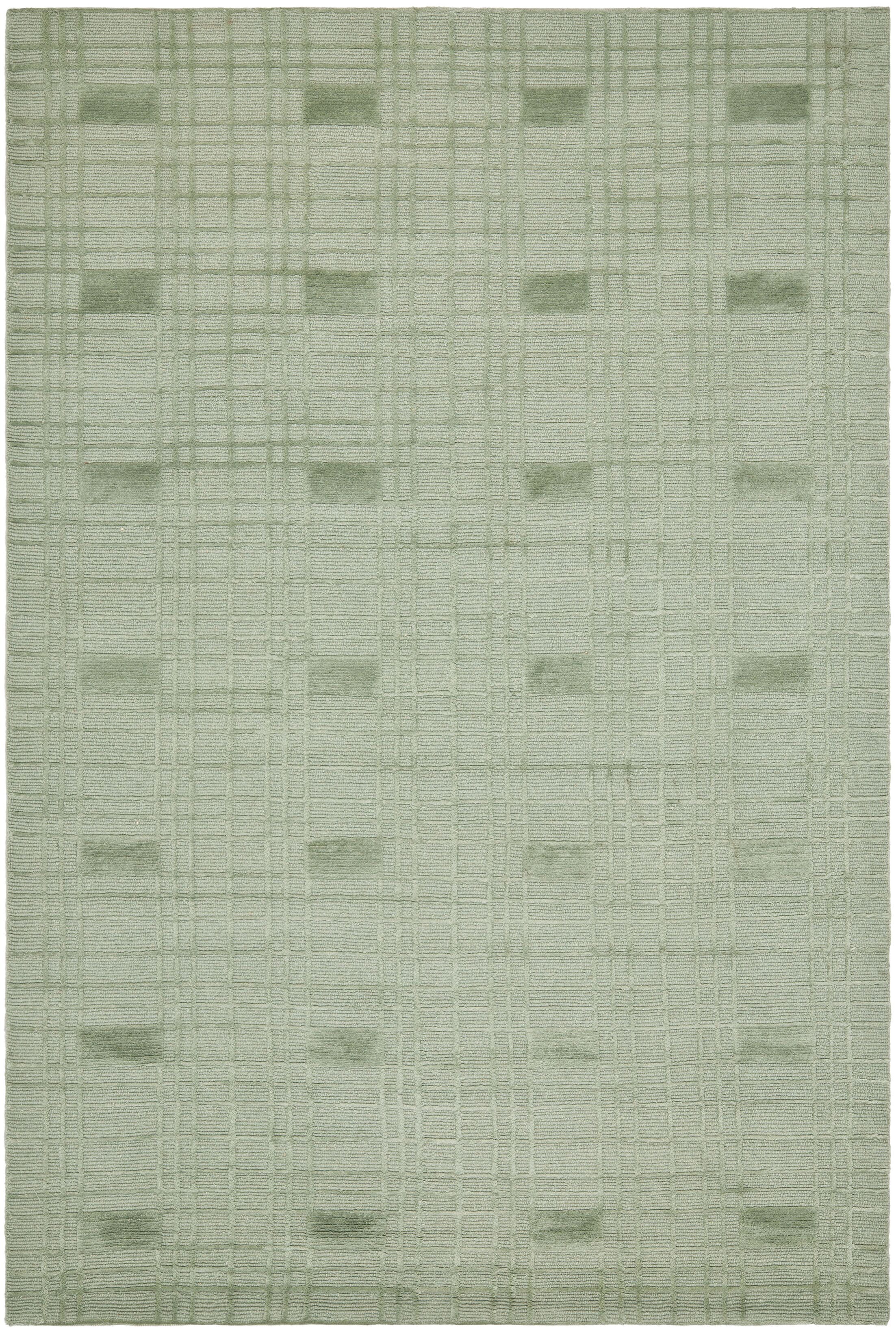 Celadon Rug Rug Size: Rectangle 6' x 9'