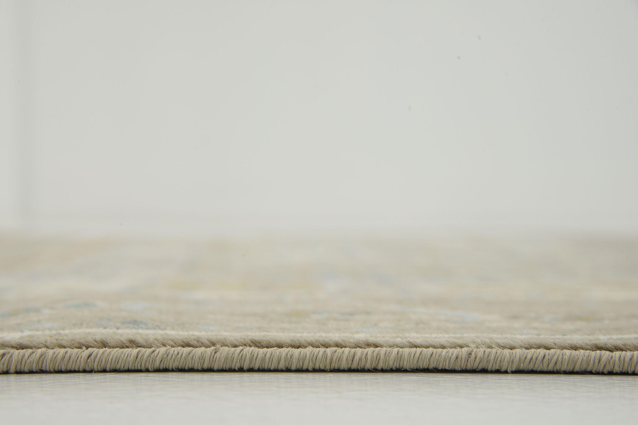 Hurst Beige Area Rug Rug Size: Rectangle 5' x 8'