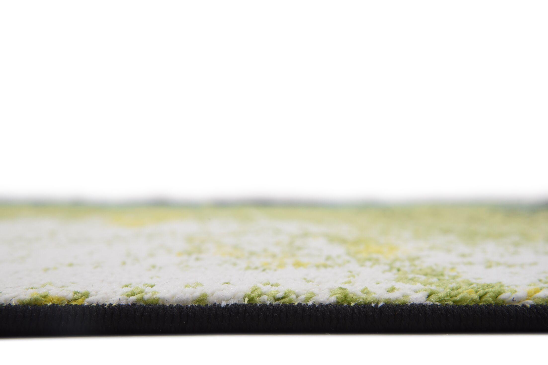 Jonathan Light Green Area Rug Rug Size: Rectangle 5' x 8'