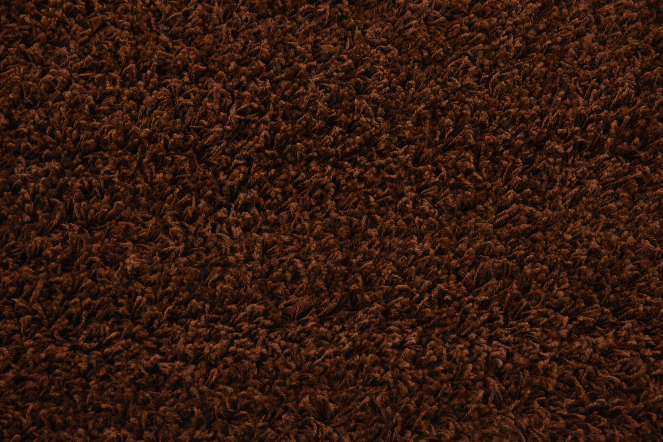 Chelmsford Brown Area Rug Rug Size: Round 6'